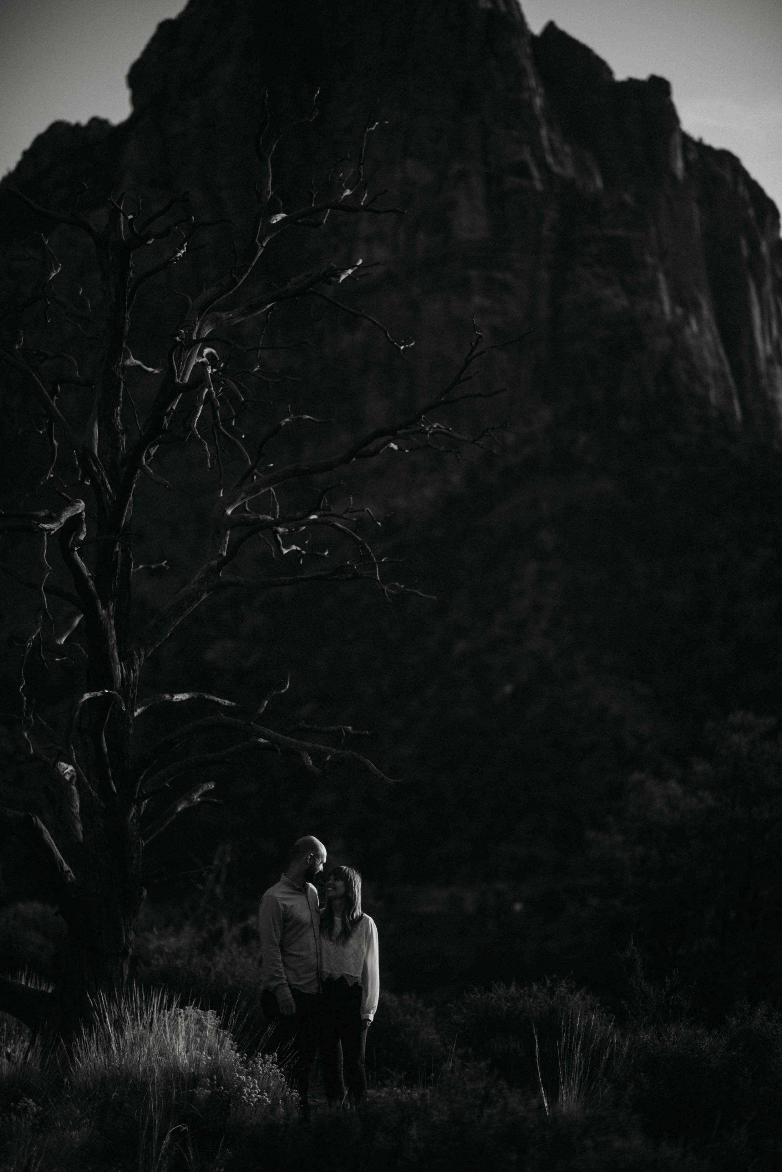 zion_national_park_utah_wedding_photography_engagement-3208.JPG