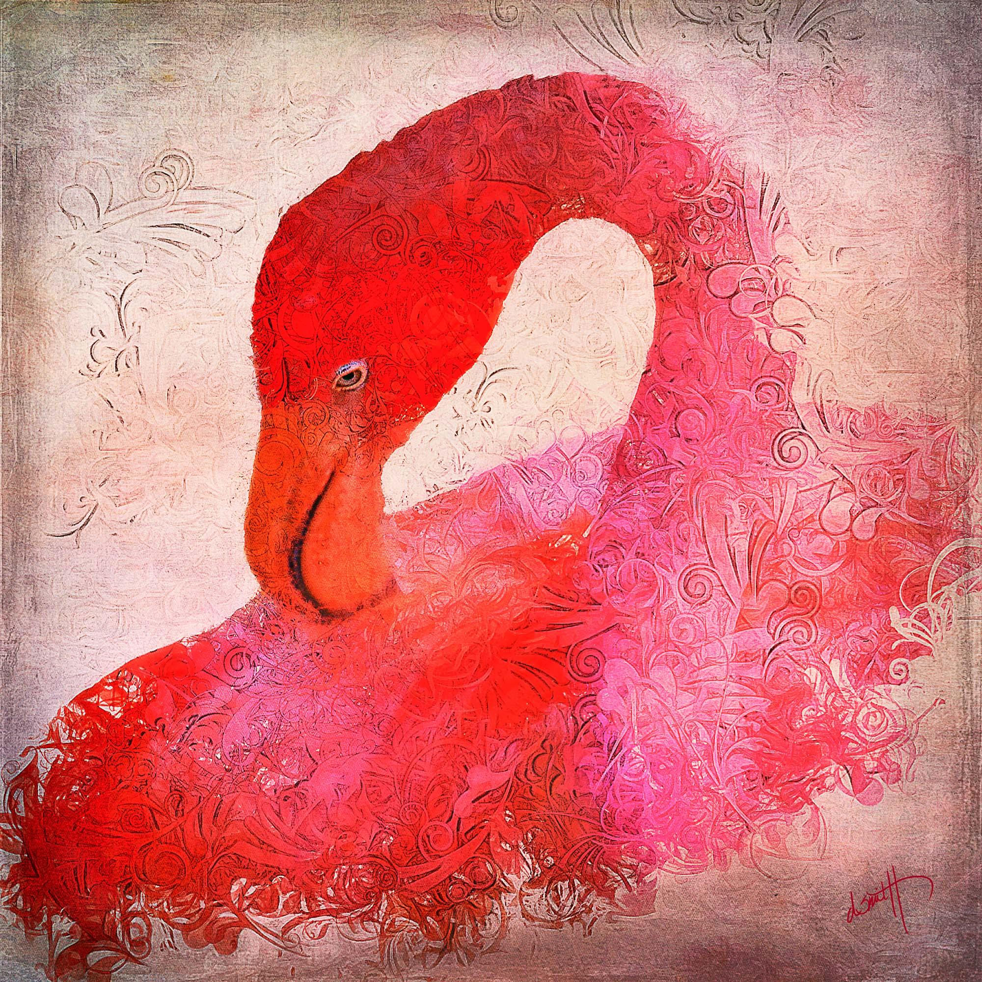 this-flamingo-wears-a-tutu-denise-smith.jpg