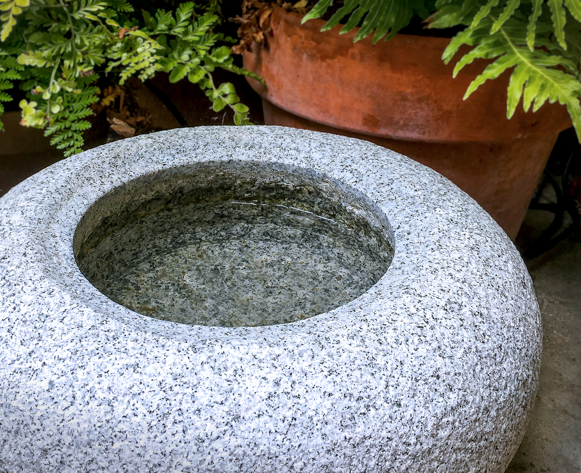 granite_bowl_vignette_4714.jpg