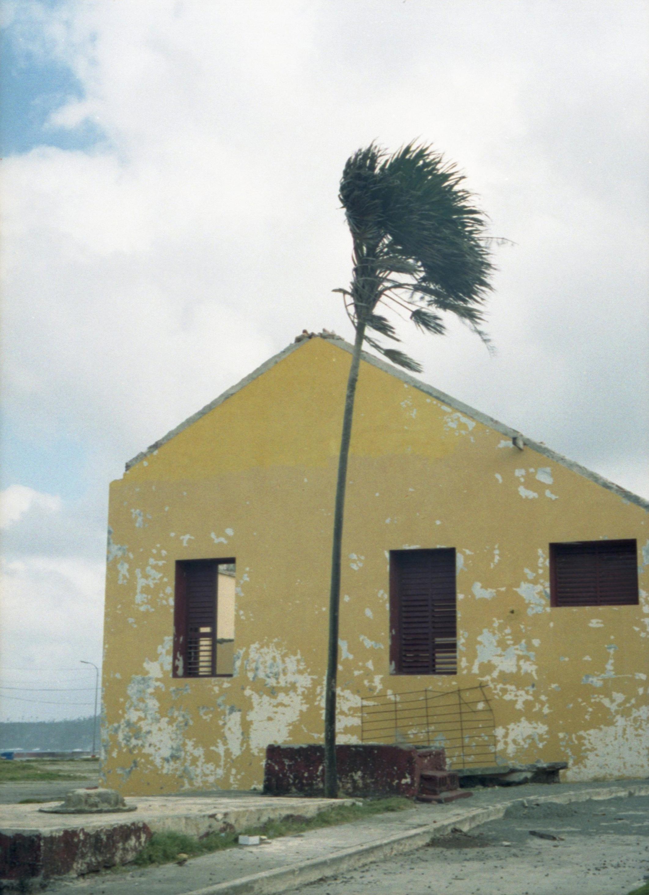 9 - Marija Vidovic, Cuba.jpg