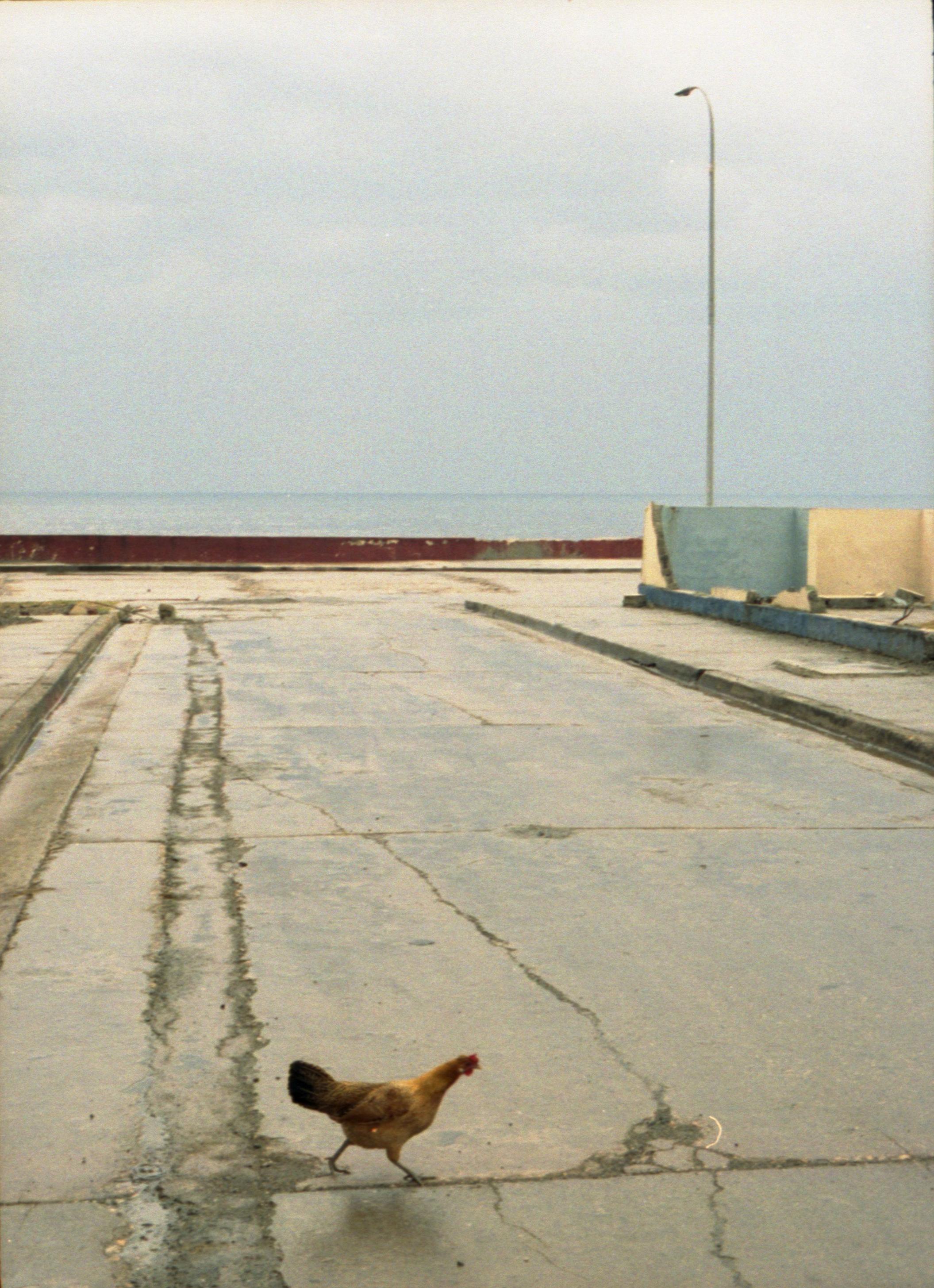 10 - Marija Vidovic, Cuba.jpg