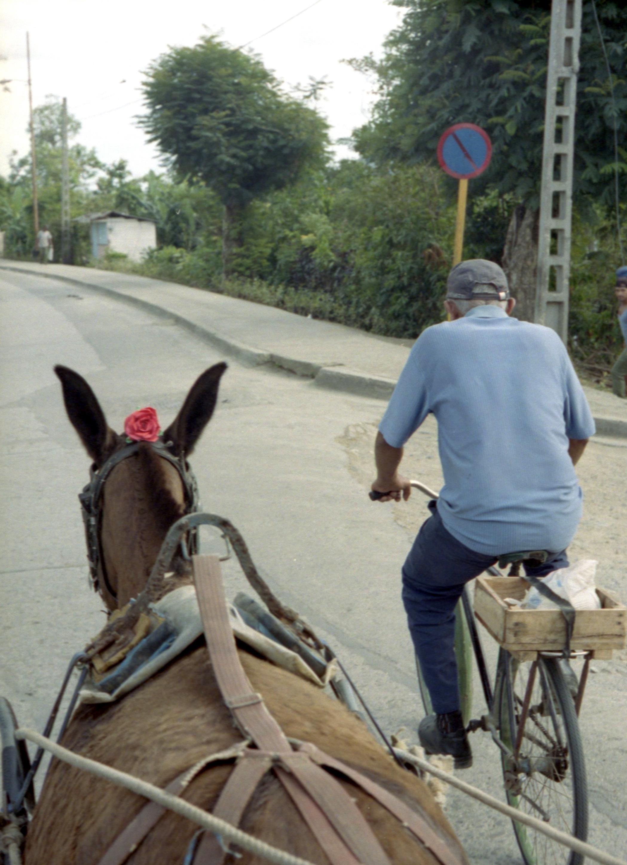 11 - Marija Vidovic, Cuba.jpg