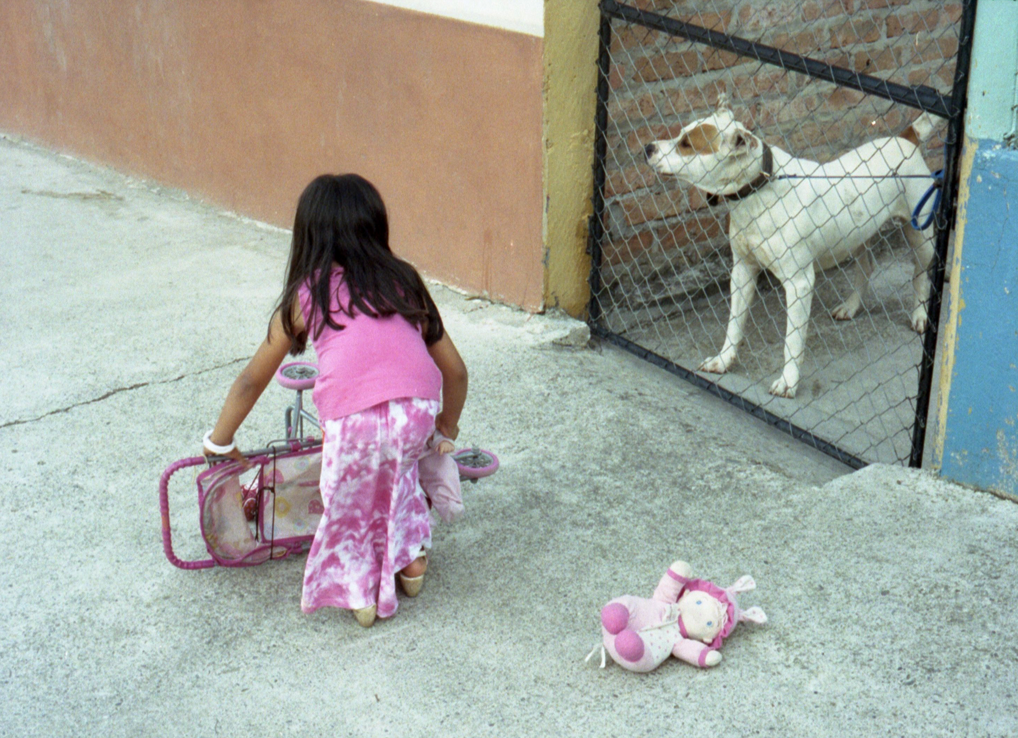 Marija Vidovic, Dogs - 14.jpg