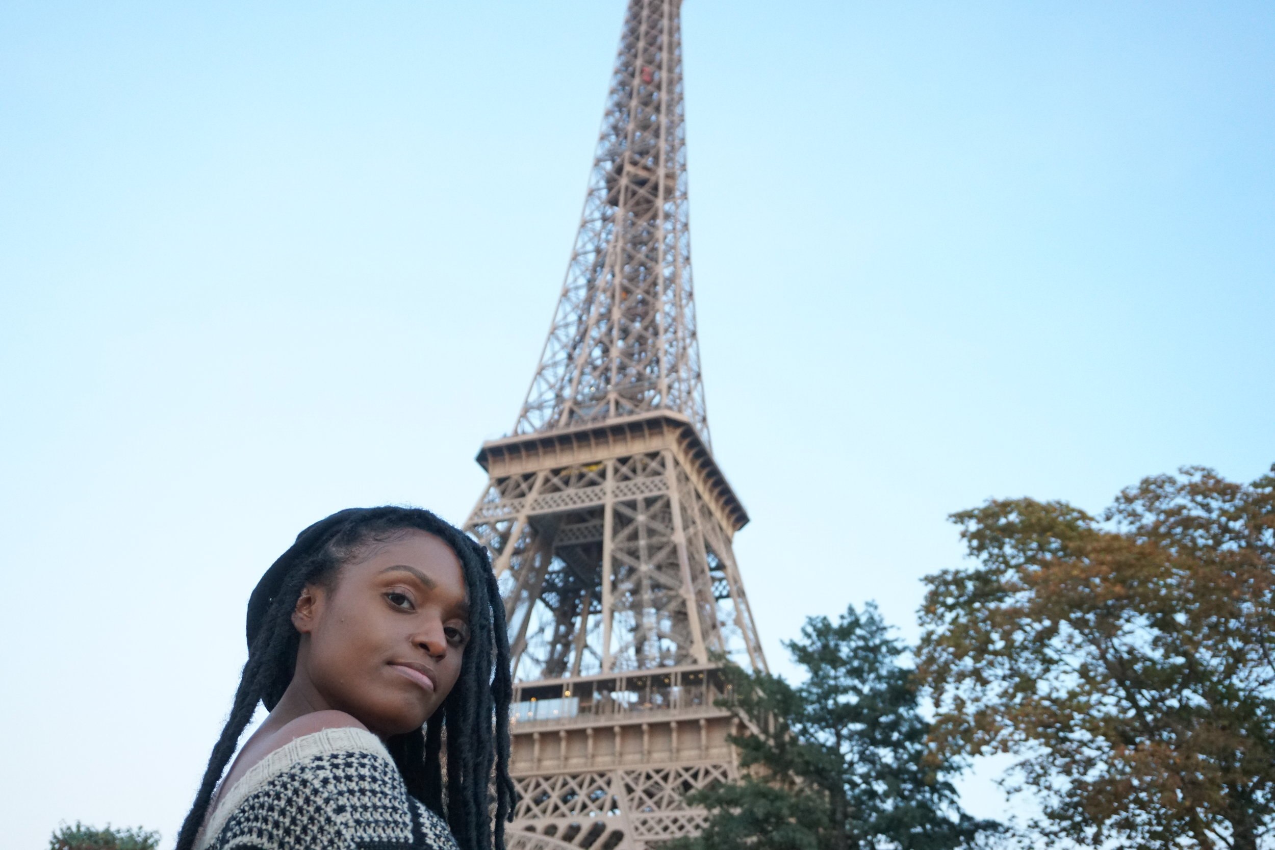 eiffel tower - Most visited paid monument in the world.