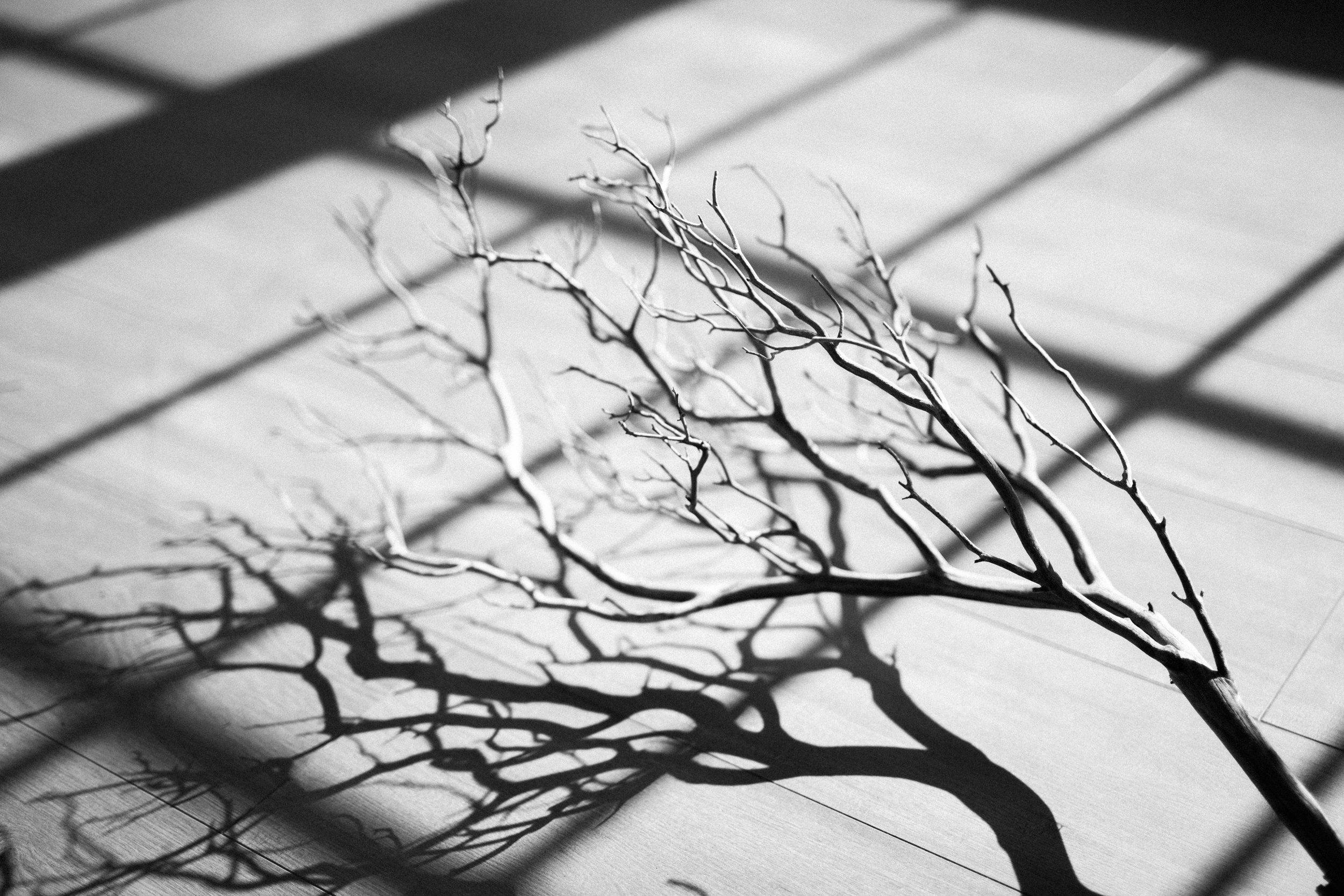 MacCoy Dean Photography -  The Light Room PDX - Merkley Artistry - Kamea Events - Glitch Films-38.jpg