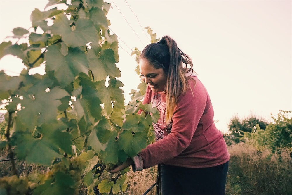 Women - Women and people of color are the backbone of the wine industry and RedHen wants to see them front and center instead of at the margins. We are committed to empowering and investing in people who are underrepresented in wine industry leadership.