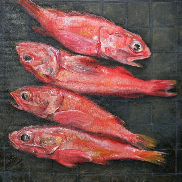 "Morning Fish. 14"" x 18"" oil on canvas"