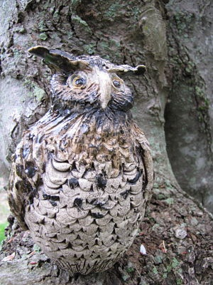 Carol Goodwin Owl
