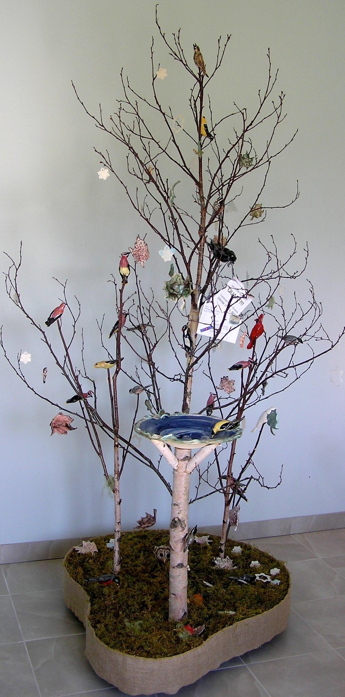 Birds, Bath & Beyond - Gerri Frager