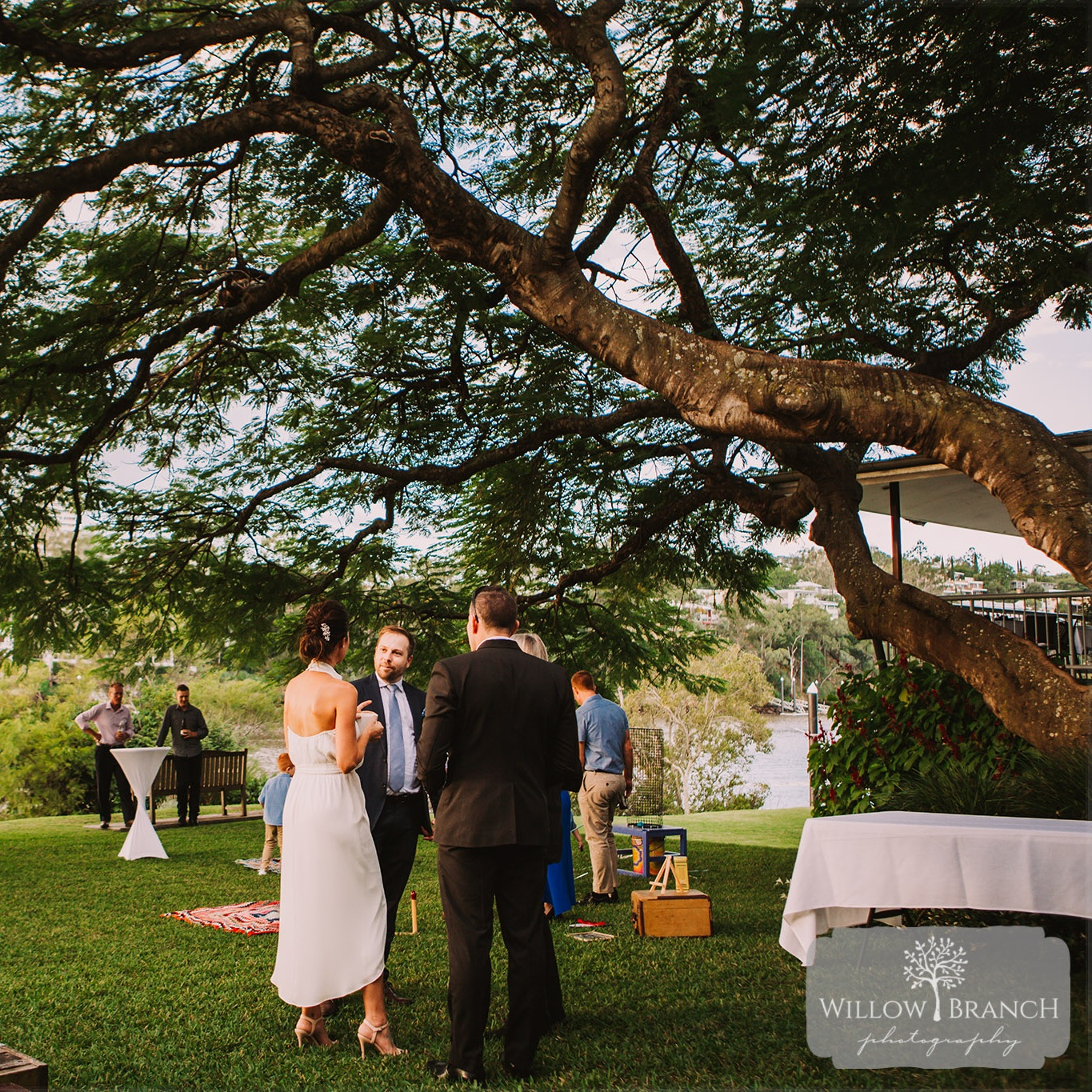 Photo:  Willow Branch Photography  Venue: Toowong Rowing Club