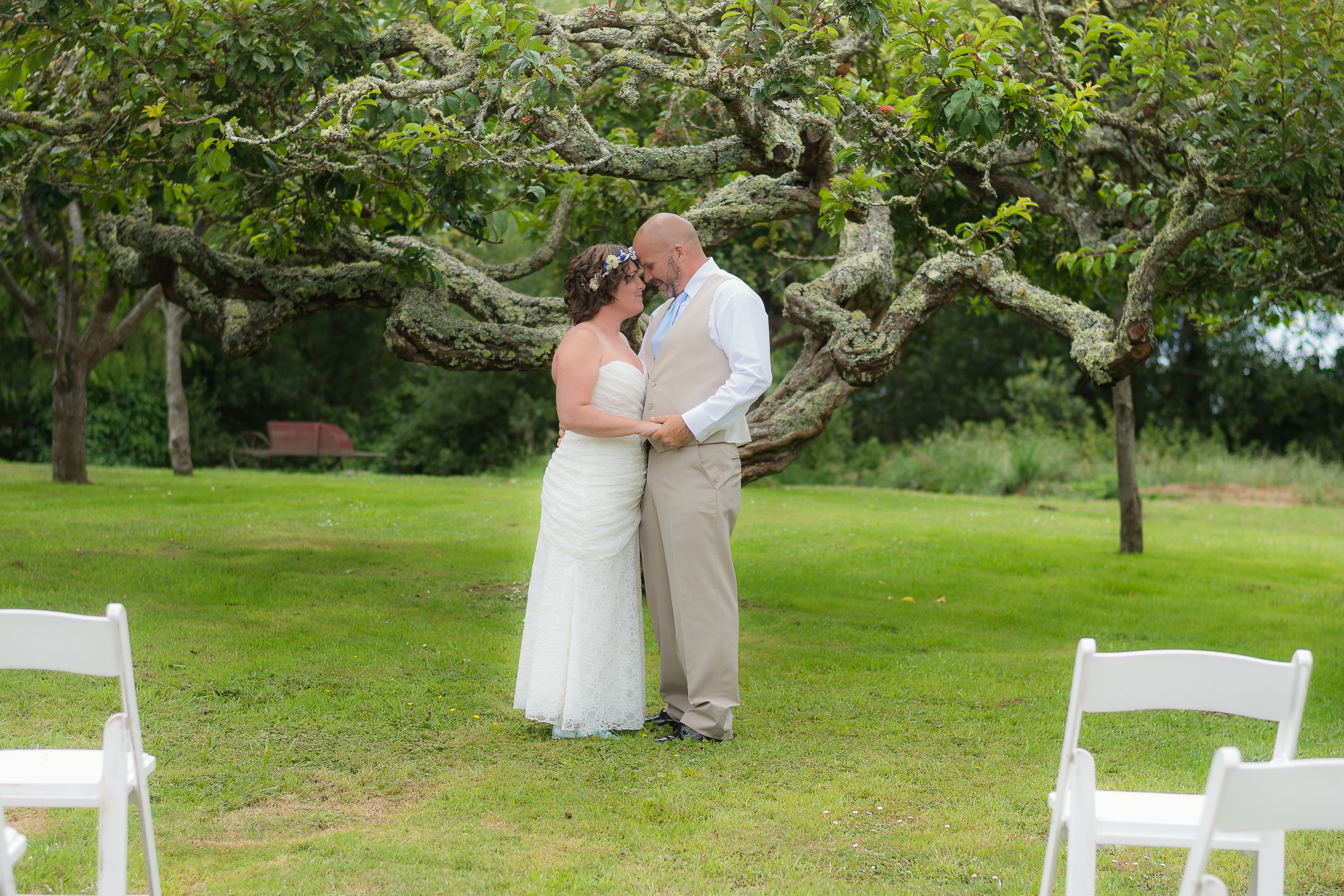 Daniel and Jessica's Fern Cottage Wedding