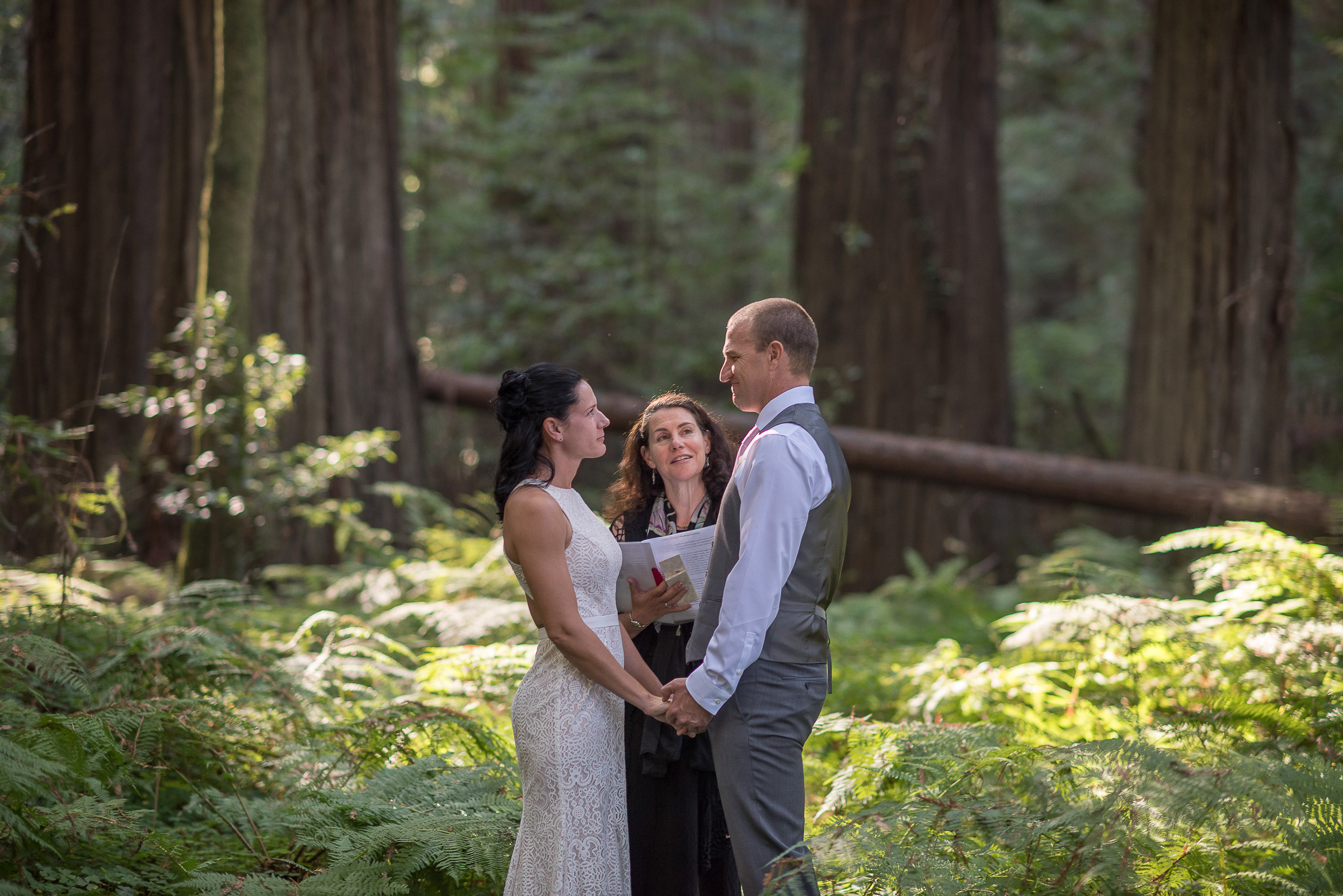 AVENUE OF THE GIANTS MAGICAL ELOPEMENT PARKYS PICS-2.JPG