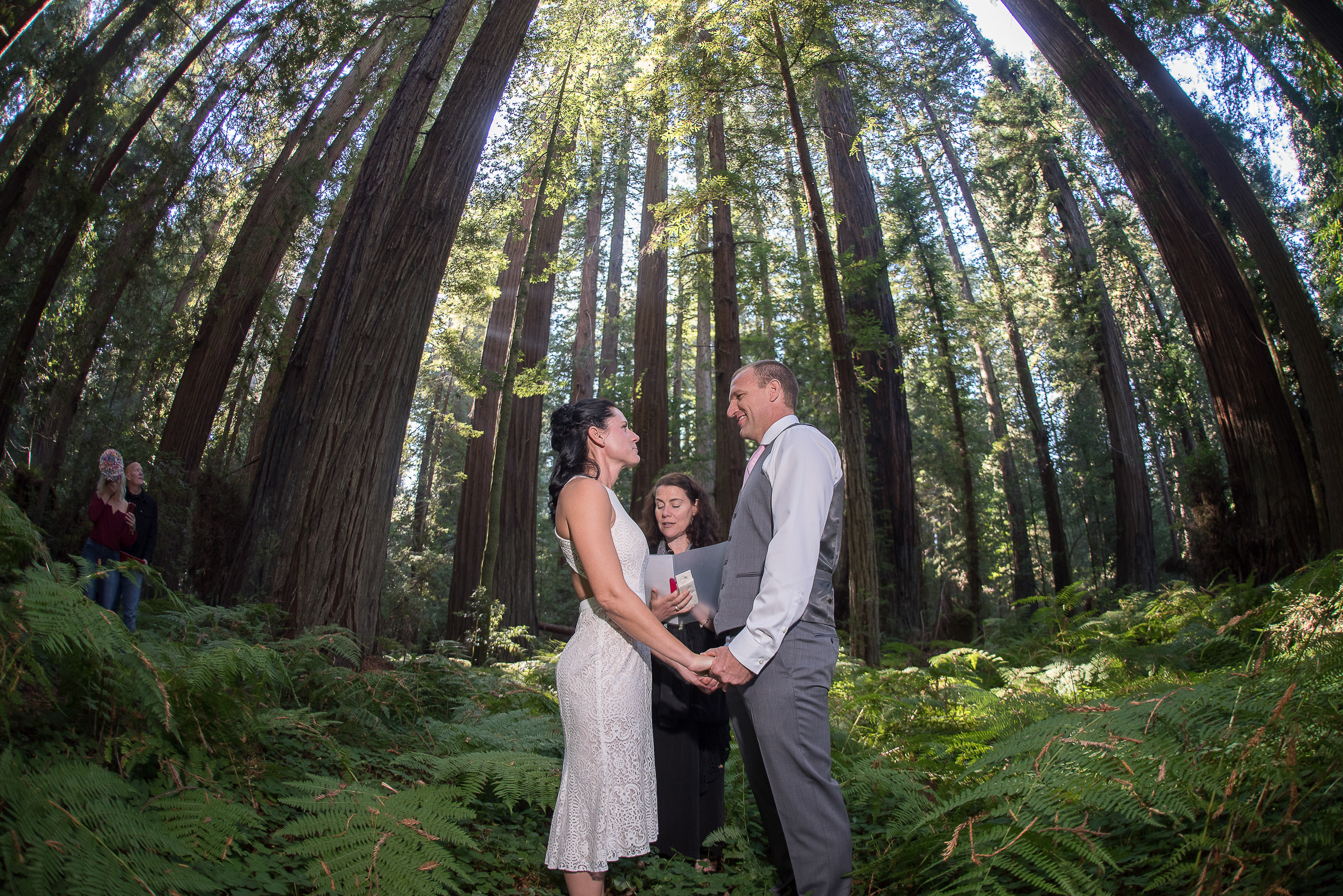 AVENUE OF THE GIANTS MAGICAL ELOPEMENT PARKYS PICS.JPG