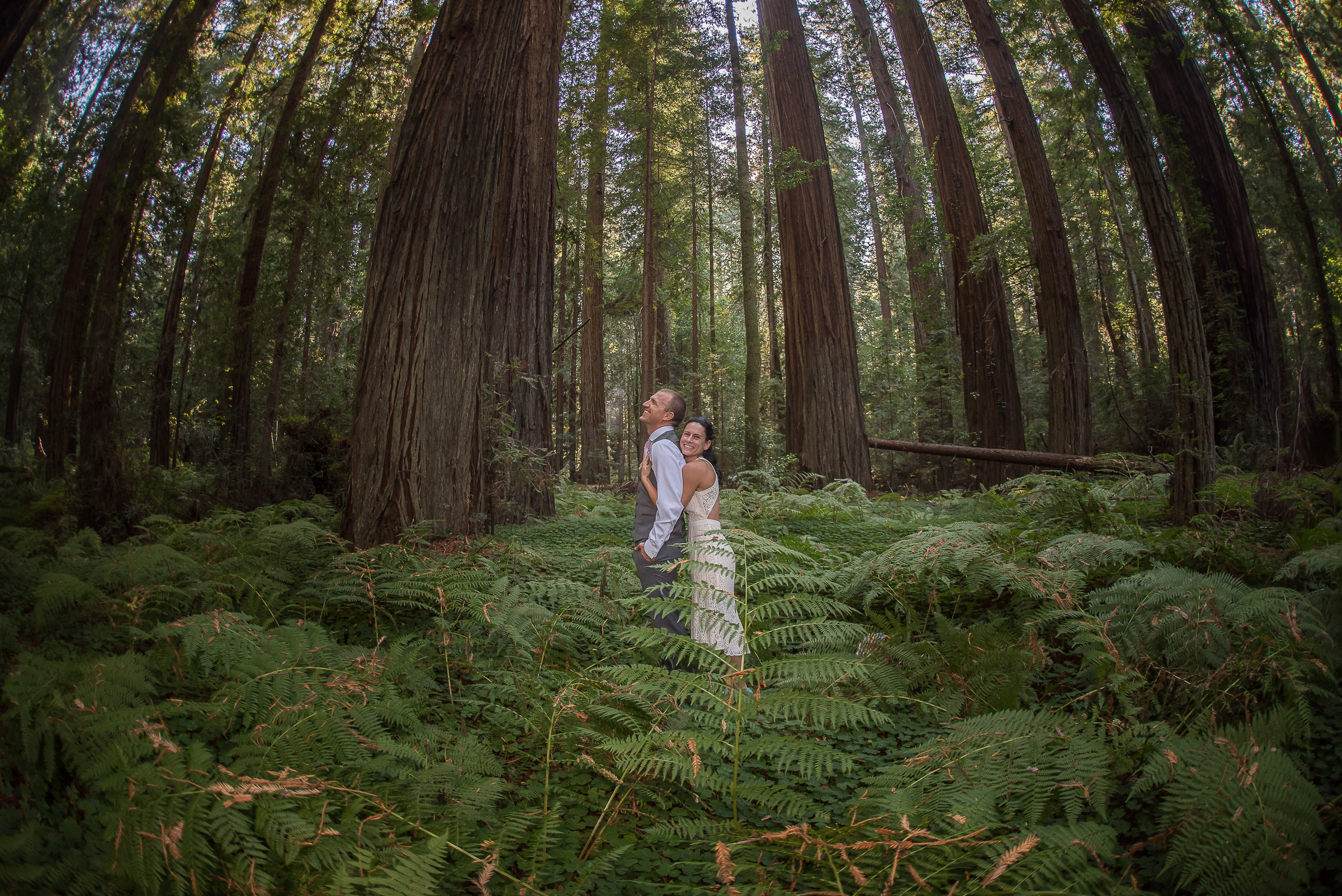 AVENUE OF THE GIANTS MAGICAL ELOPEMENT PARKYS PICS-11.JPG