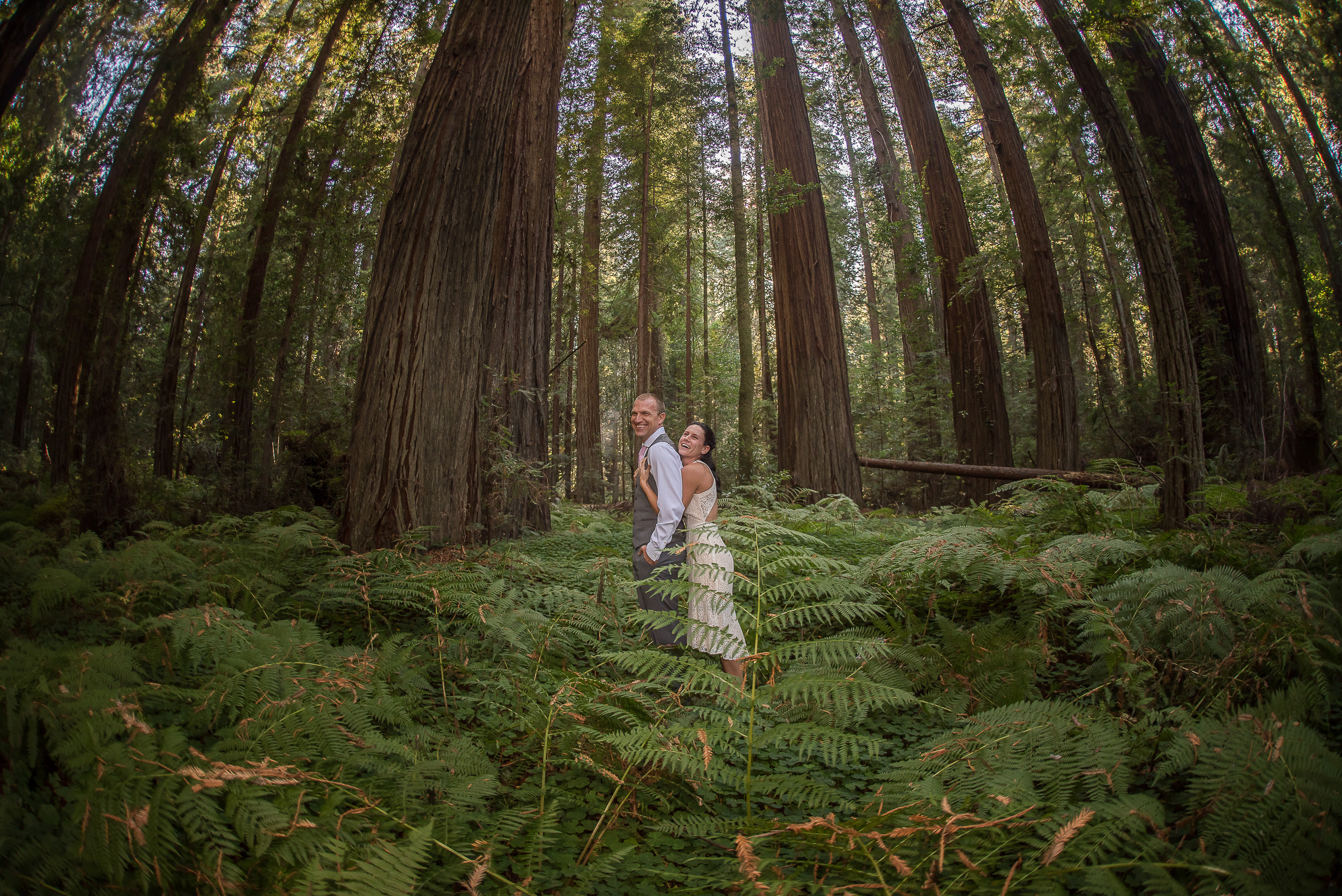 AVENUE OF THE GIANTS MAGICAL ELOPEMENT PARKYS PICS-12.JPG