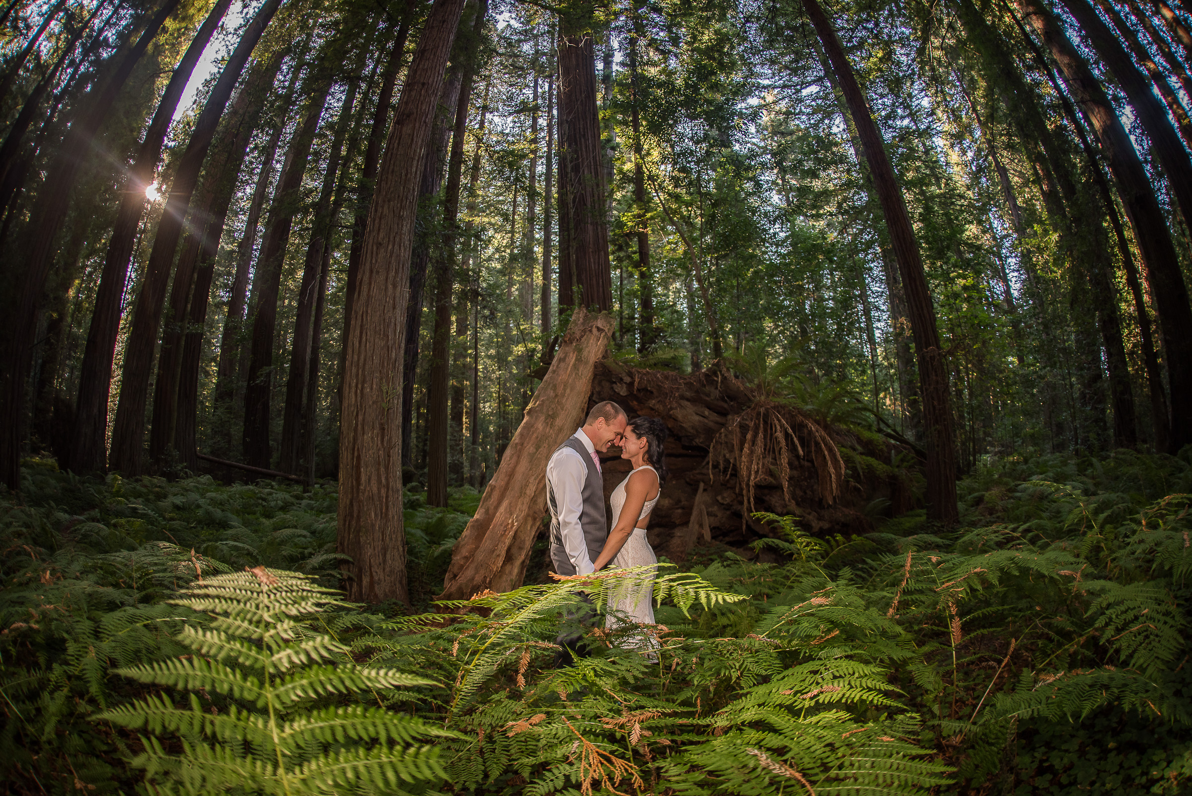 AVENUE OF THE GIANTS MAGICAL ELOPEMENT PARKYS PICS-18.JPG