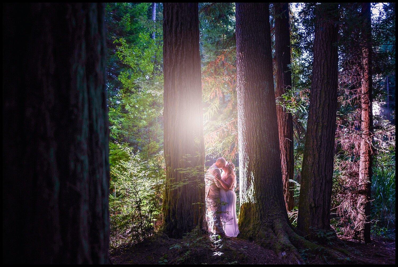 ParkysPicsHumboldtCountyElopementRedwoodsSequoiaPark_0244.jpg