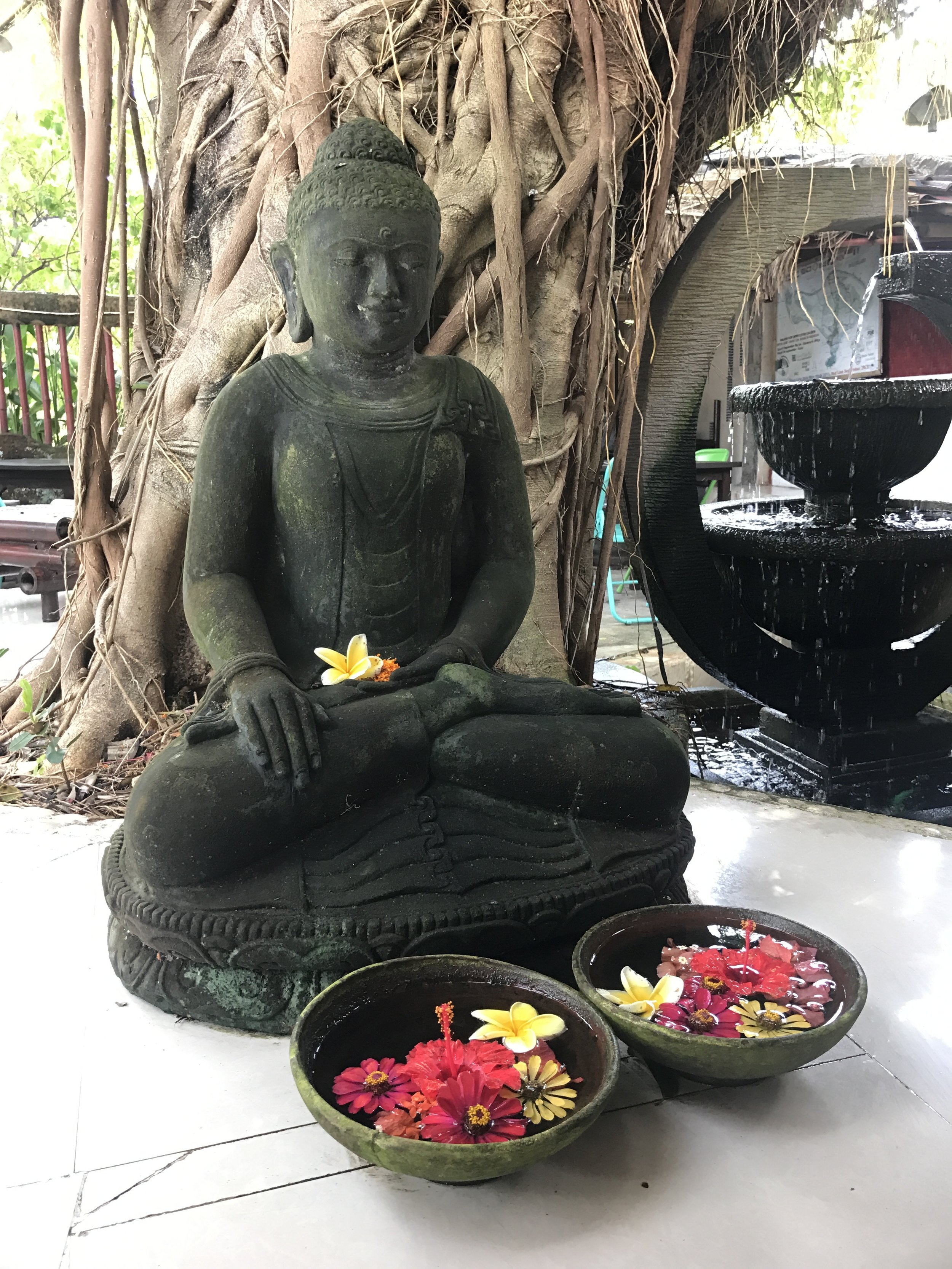 Serenity Eco Guesthouse_Buddha and Bayan Tree