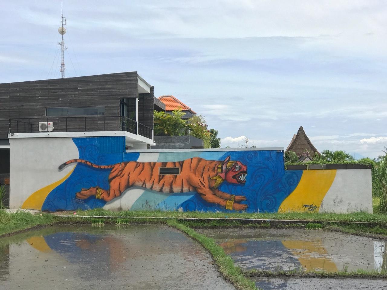 Tiger Graffiti Canggu Bali.JPG