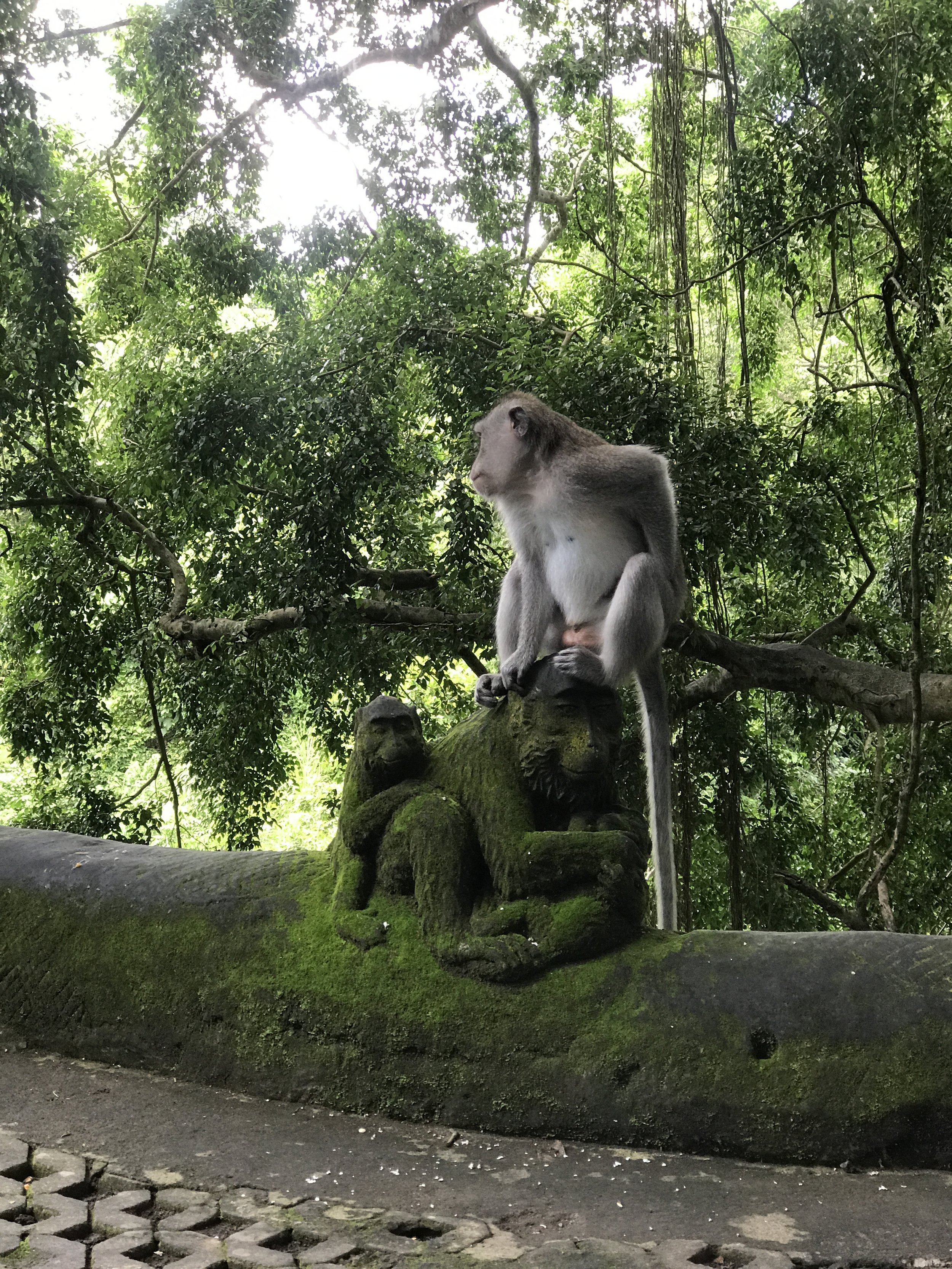 Ubud Sacred Monkey Forest_Monkey on a Monkey Statue.JPG