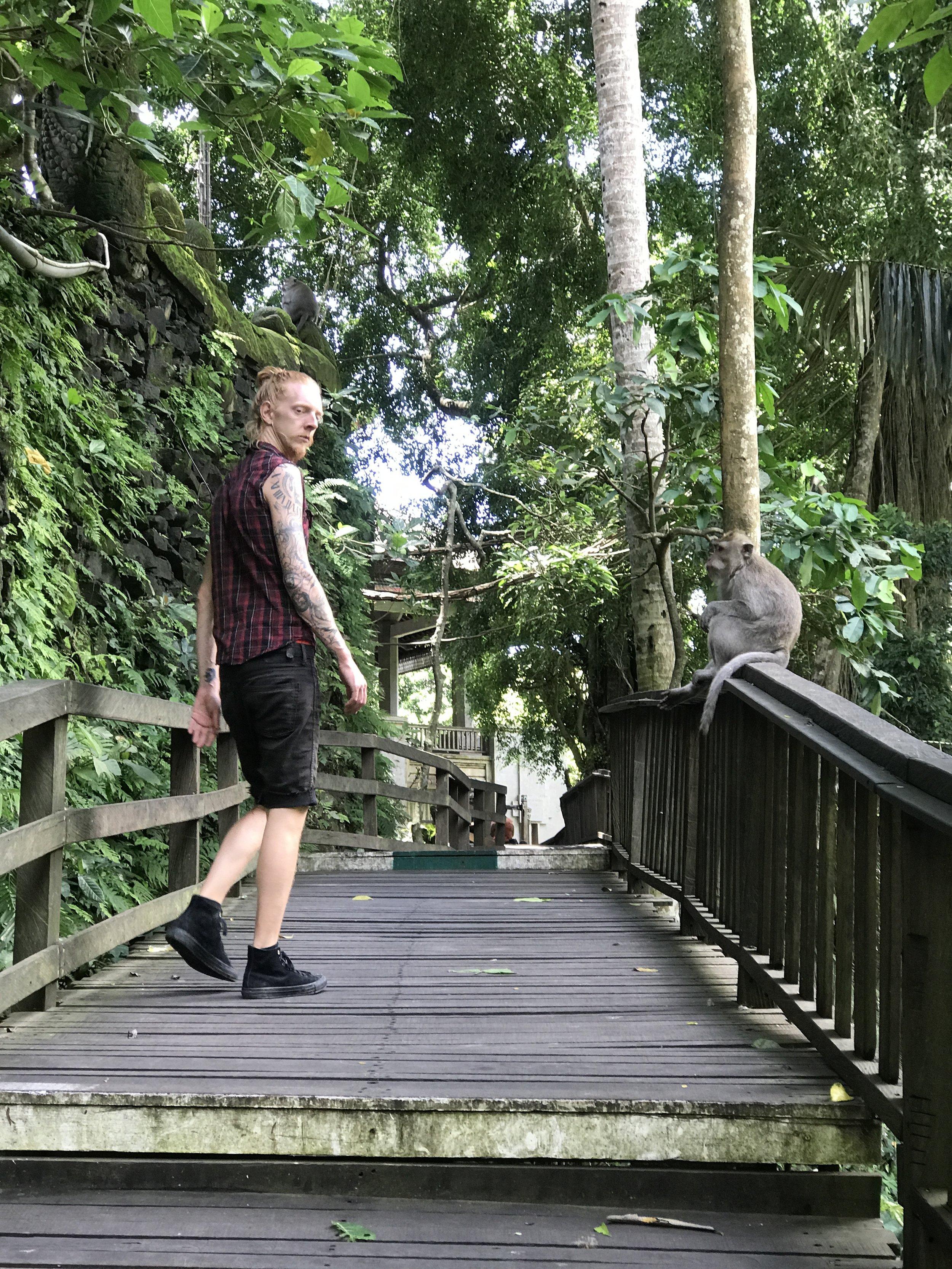 Ubud Sacred Monkey Forest_Monkey See.JPG