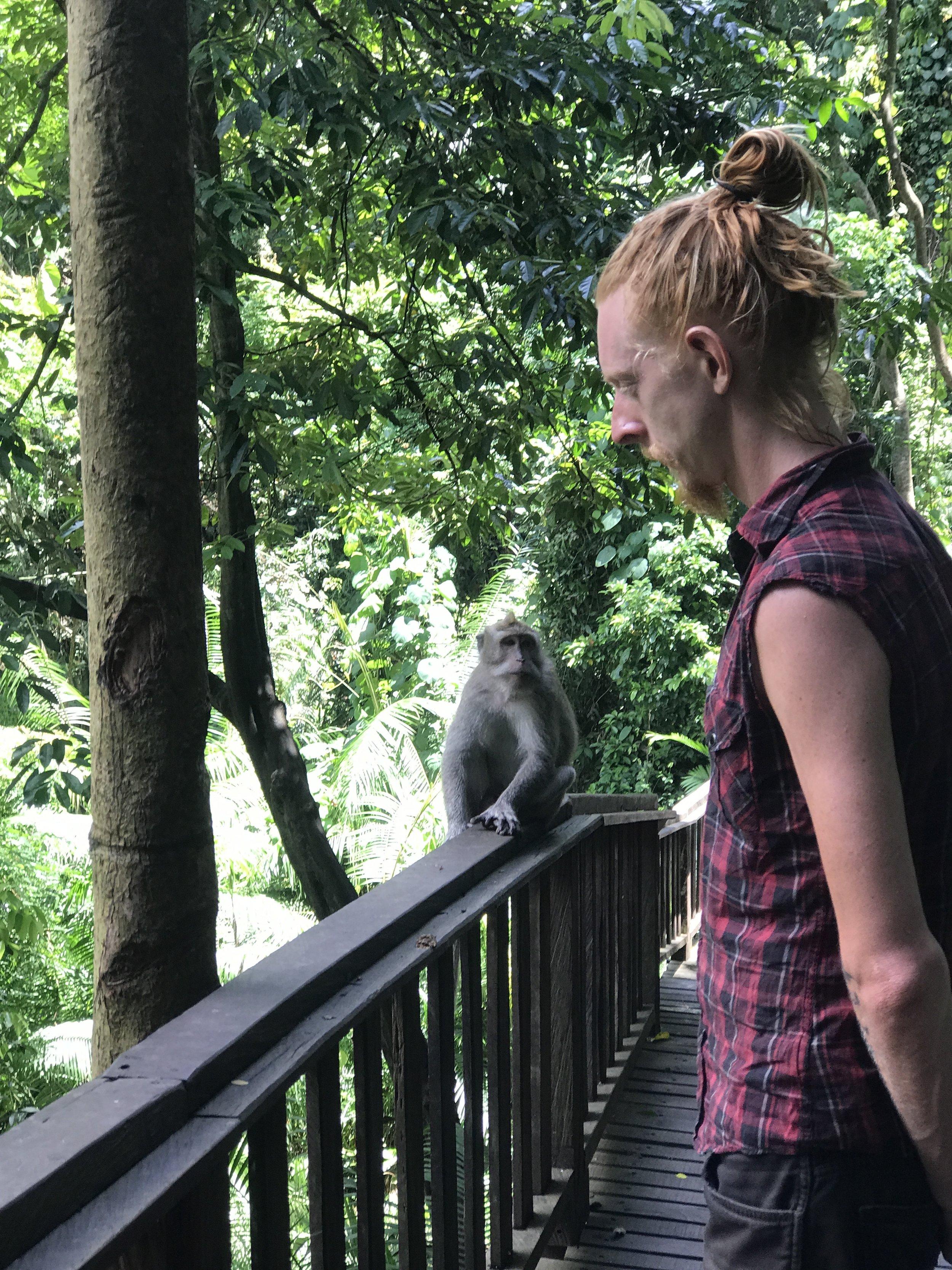 Ubud Sacred Monkey Forest.JPG