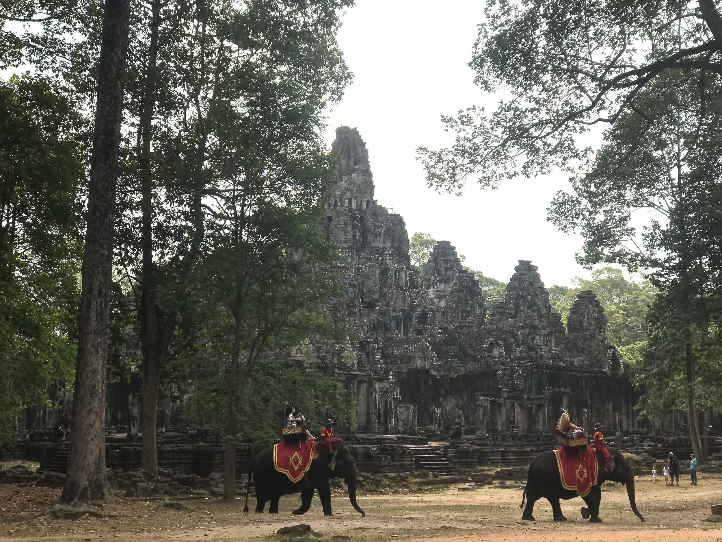 Elephants carry tourists in high heat at Angkor Wat's Bayon Temple in Cambodia. An elephant that  died of heatstroke  under these conditions in 2016 sparked an international outcry, including a petition to ban elephant riding in Cambodia that was signed by tens of thousands. This photo was taken in 2017.