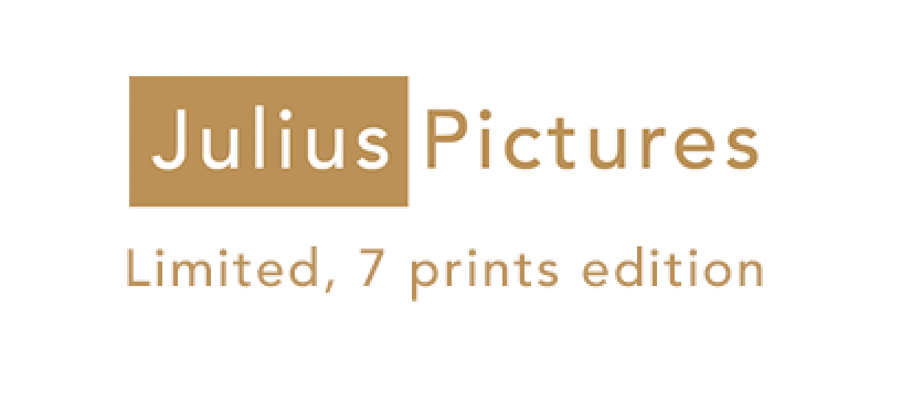 JuliusPicture_LE7prints.png
