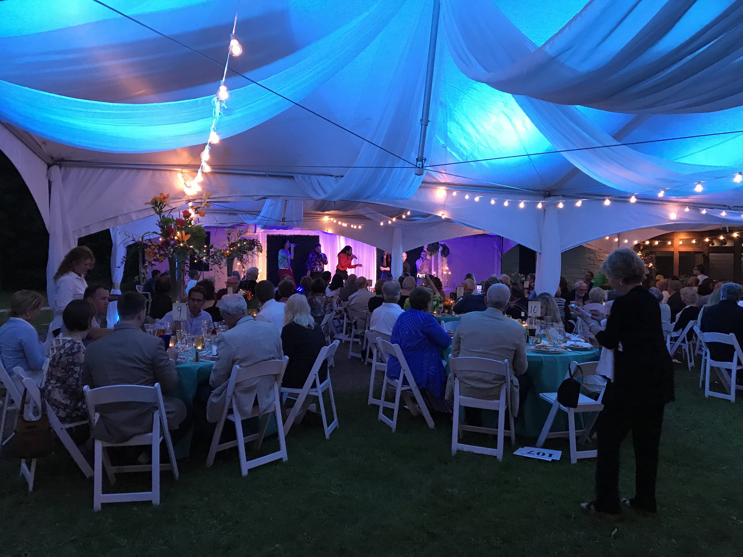 Six Appeal performing at TLHD Summer Soiree.JPG