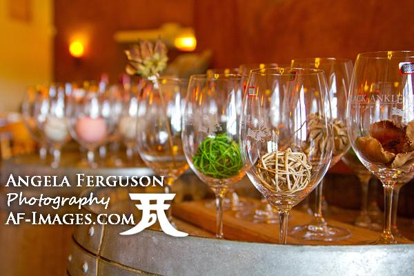 Black Ankle Vineyards, copyright Angela Ferguson Photography, Mt Airy, MD.