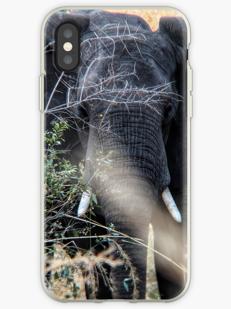 elephant iPhone case.jpg