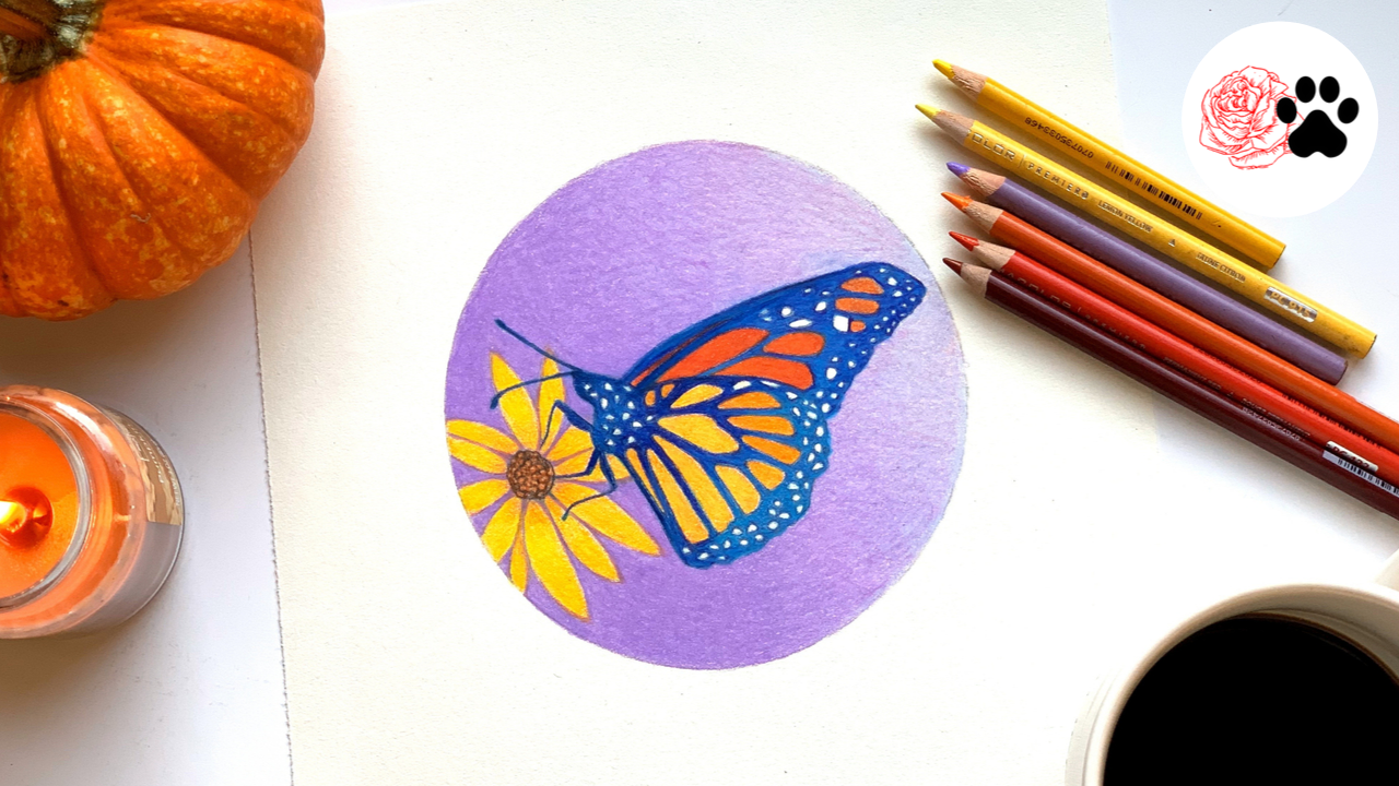 Butterfly ial (1).png