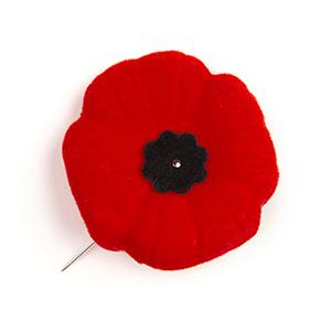 The poppy pin ^