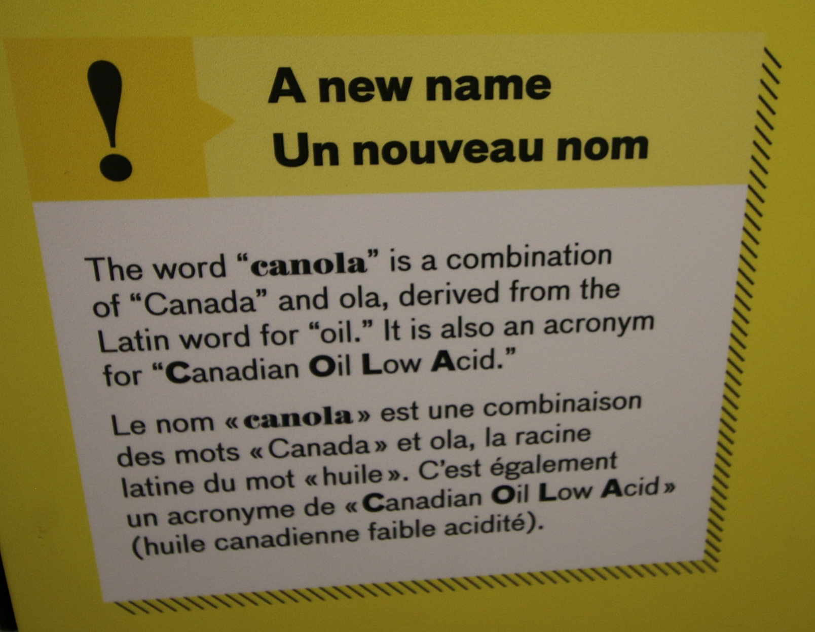 Canada is the world's largest producer and exporter of Canola oil.