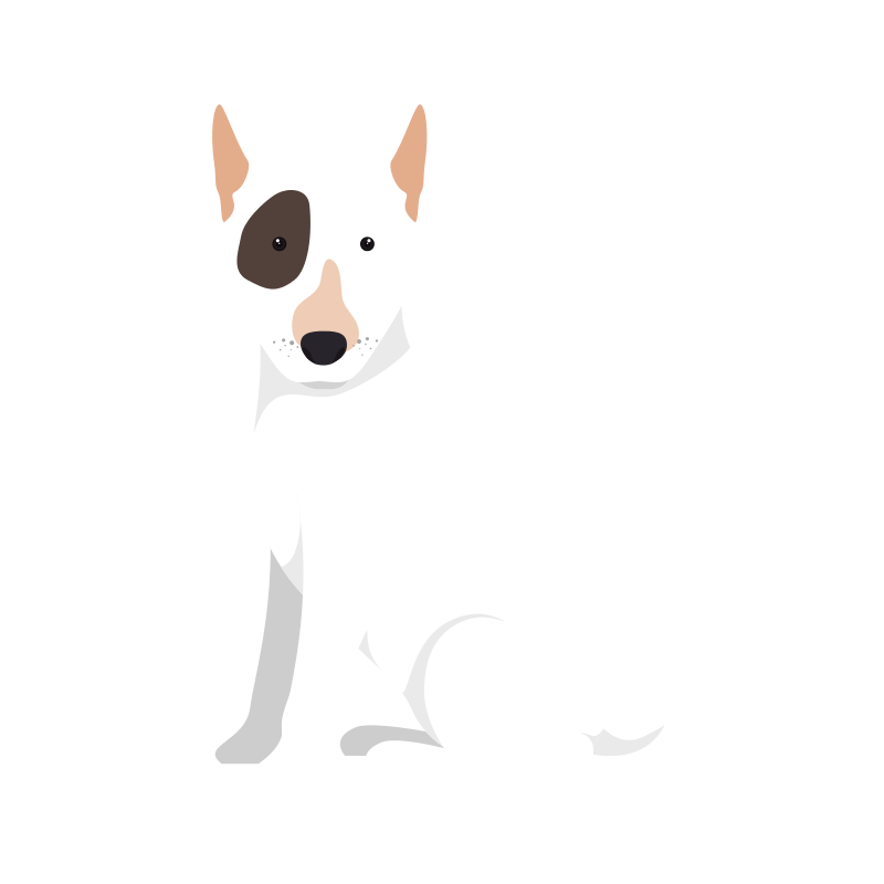 dog button image.png