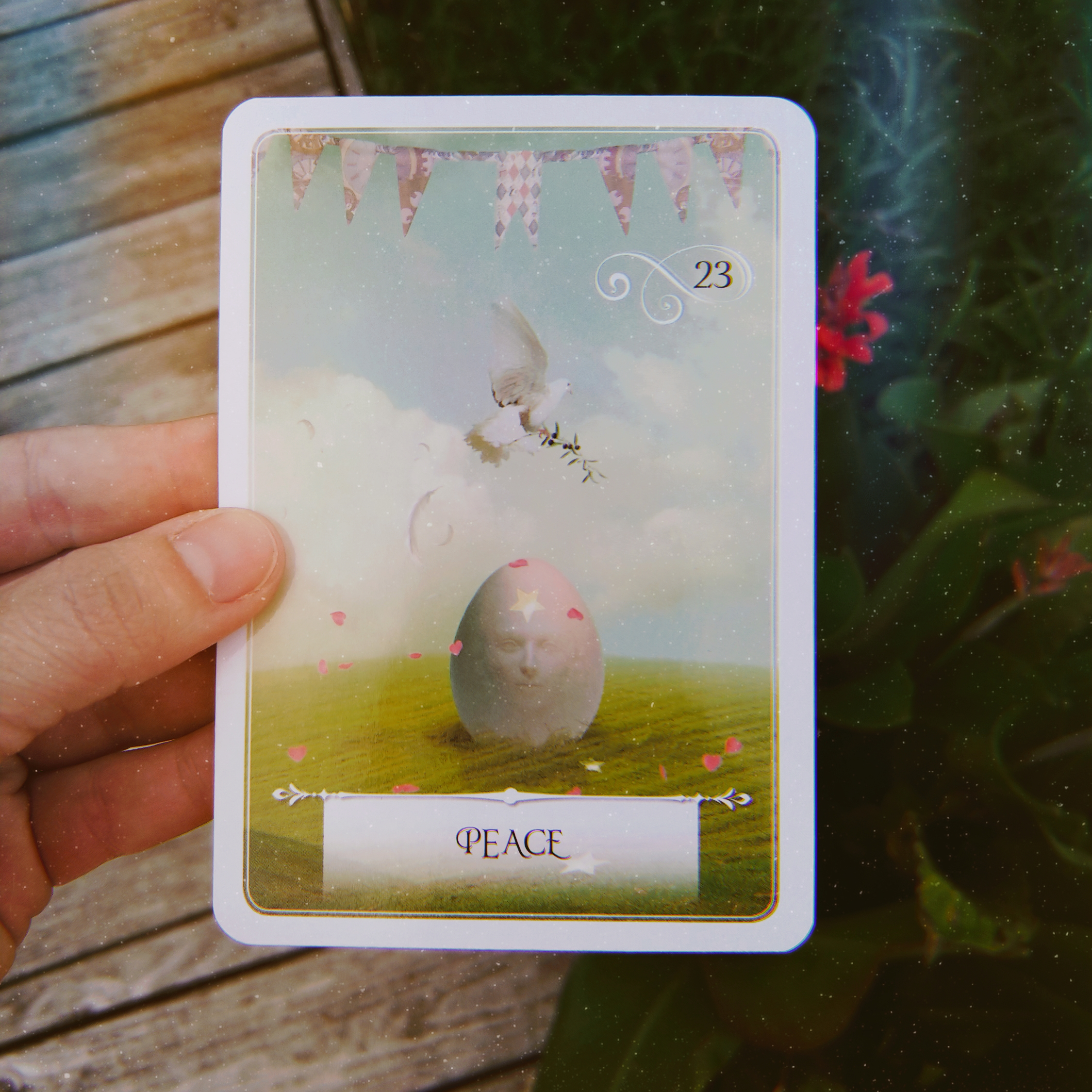 Wisdom of the Oracle divination cards by Colette Baron-Reid