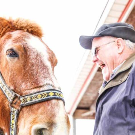 Senior Times: The Draft Horse Farmer (PDF)