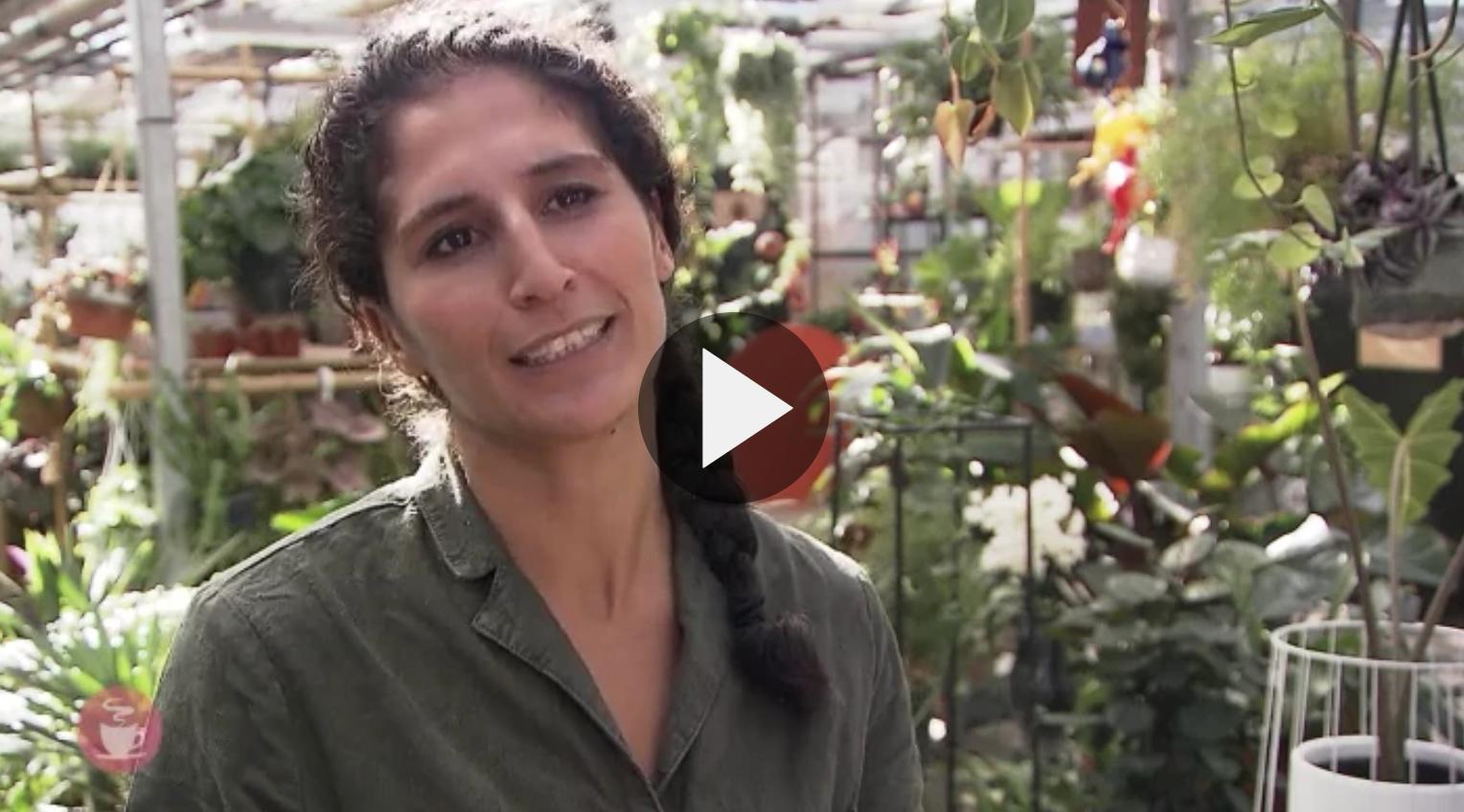 Koffietijd - Karima deelt haar plantenkennis.png