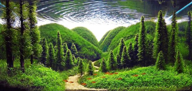Een aquarium in de 'Nature style'. Deze stijl probeert de natuur in miniatuur na te bootsen. Zowel landschappen met bergen en bomen als stukken jungle worden onder deze stijl verstaan.