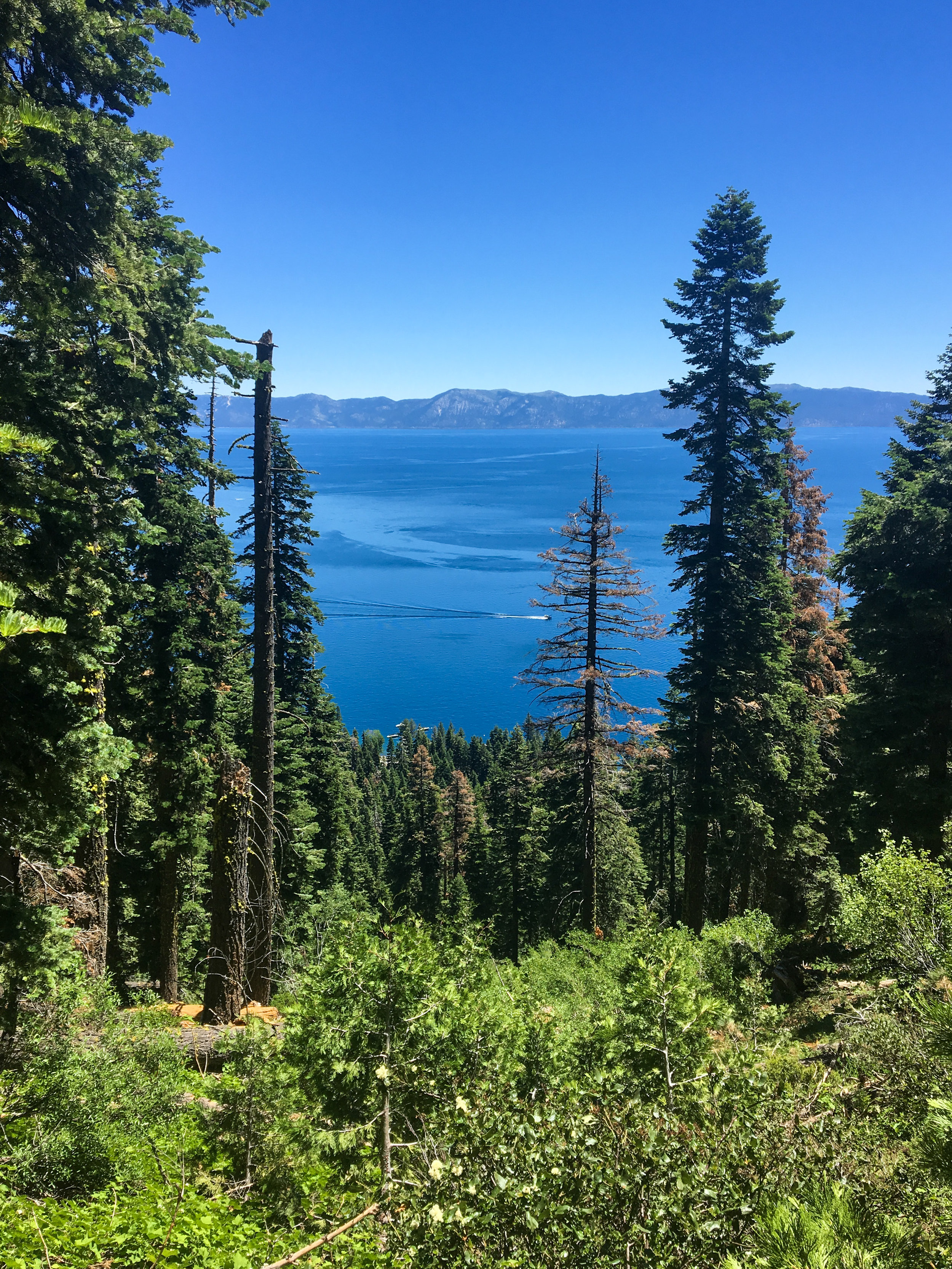 LakeTahoe_View.jpg