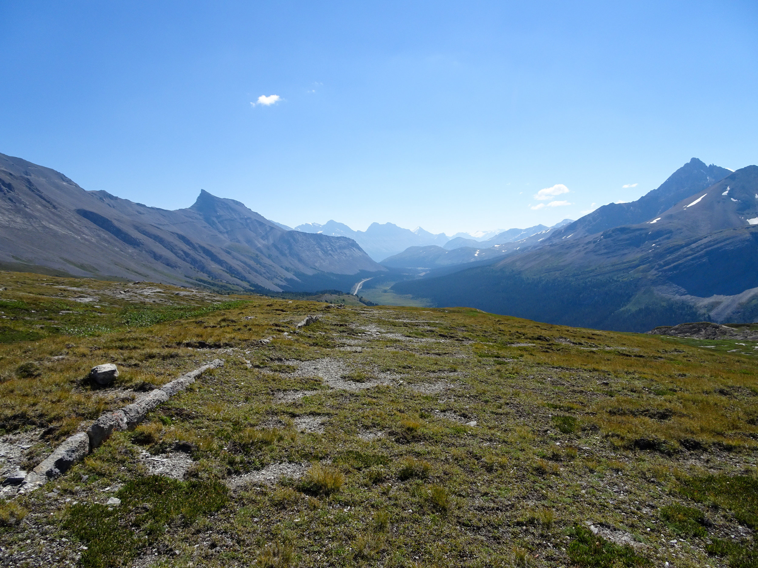 View of the Icefields Parkway from Wilcox Pass