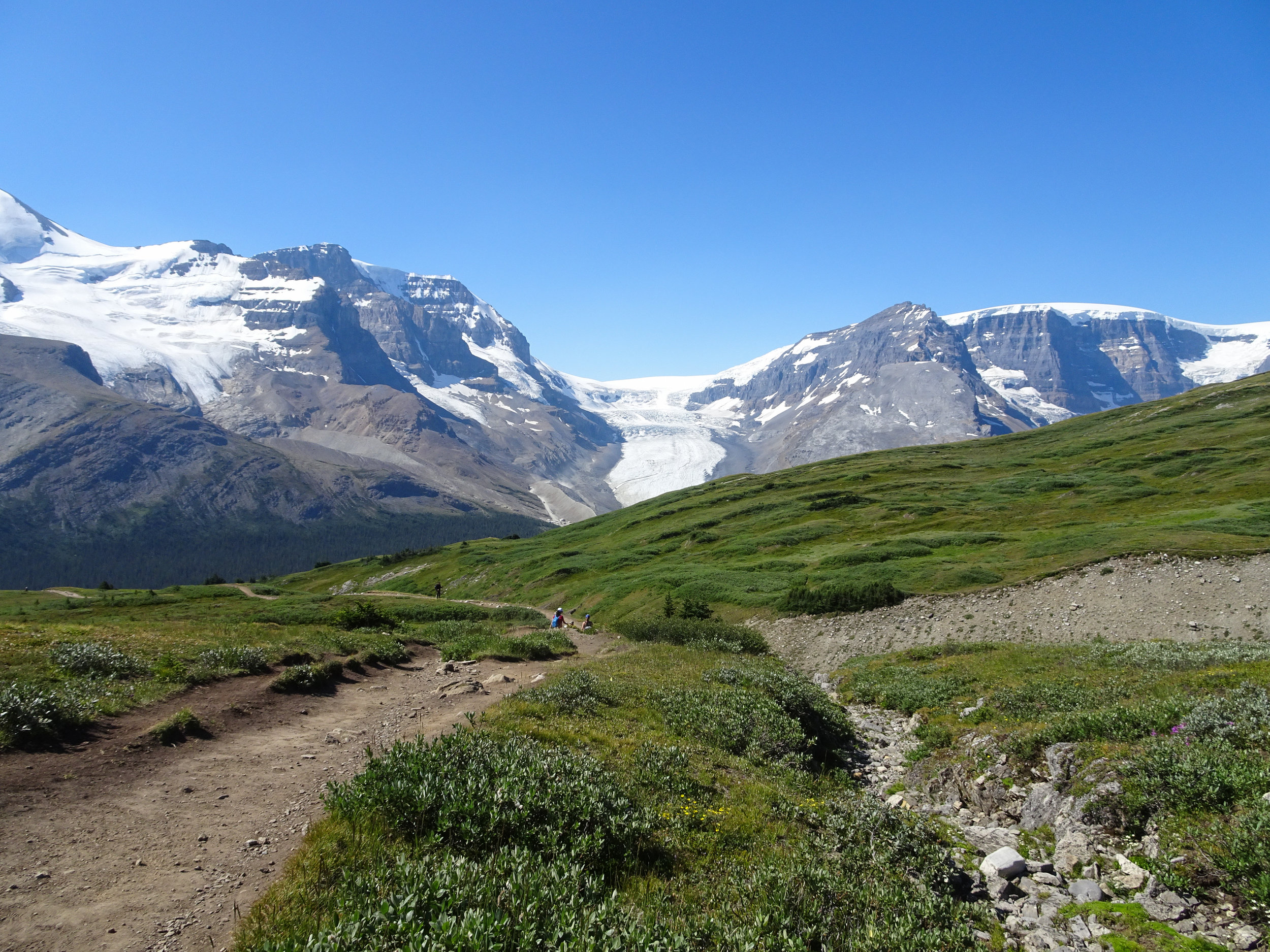 View of the Athabasca Glacier