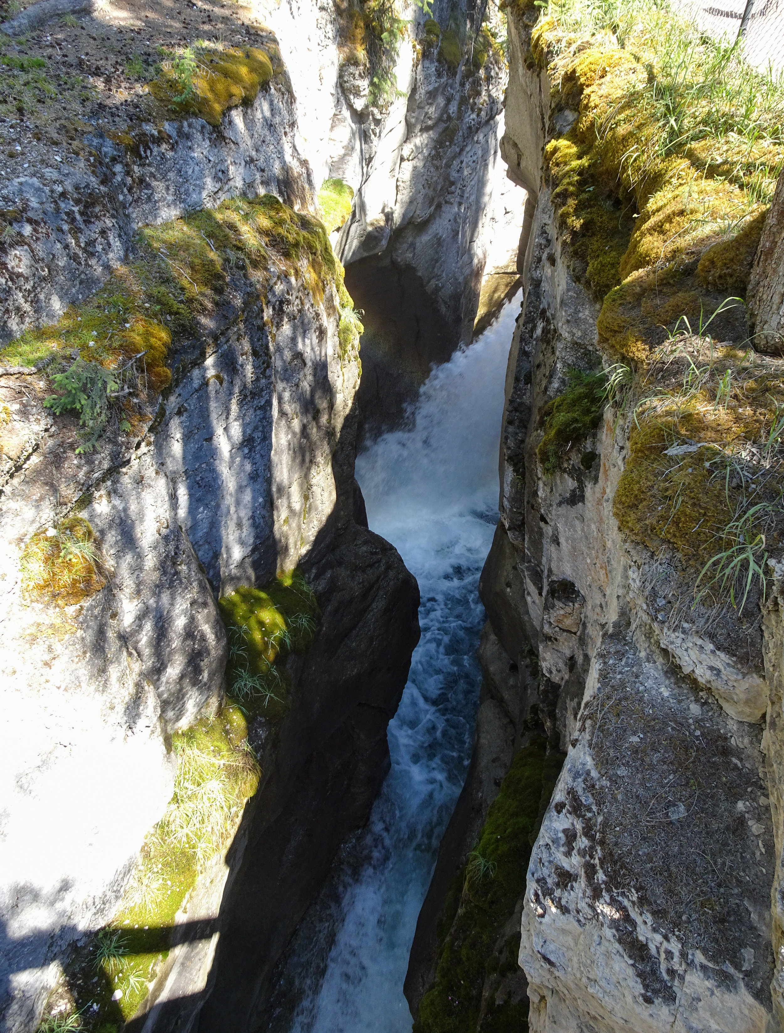 Maligne Canyon Bridge 1