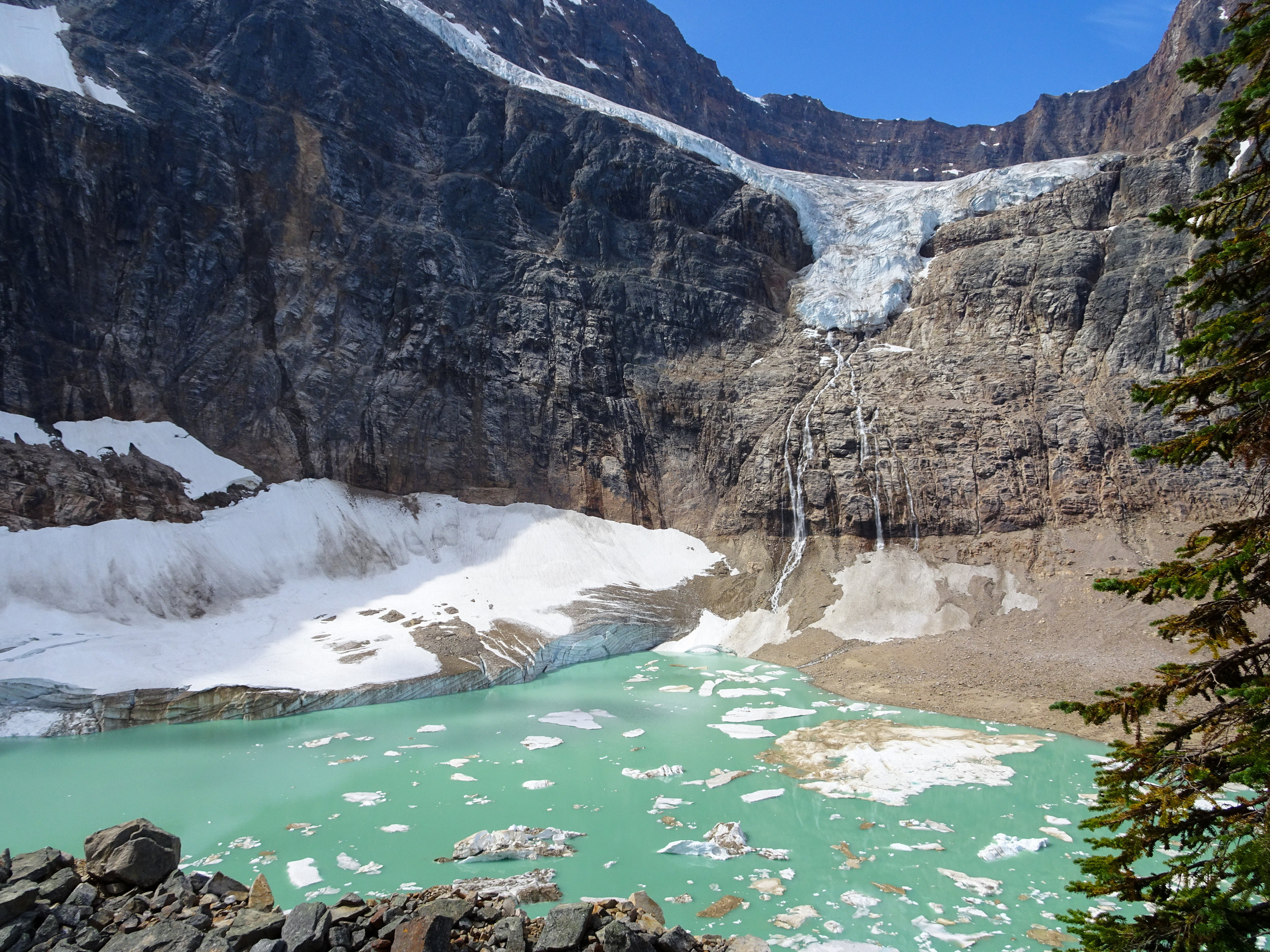Angel Glacier Jasper National Park