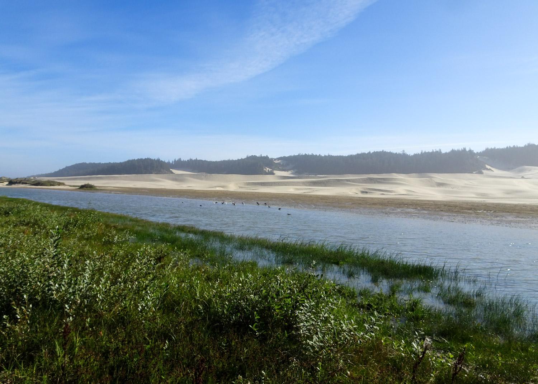 The Oregon Dunes