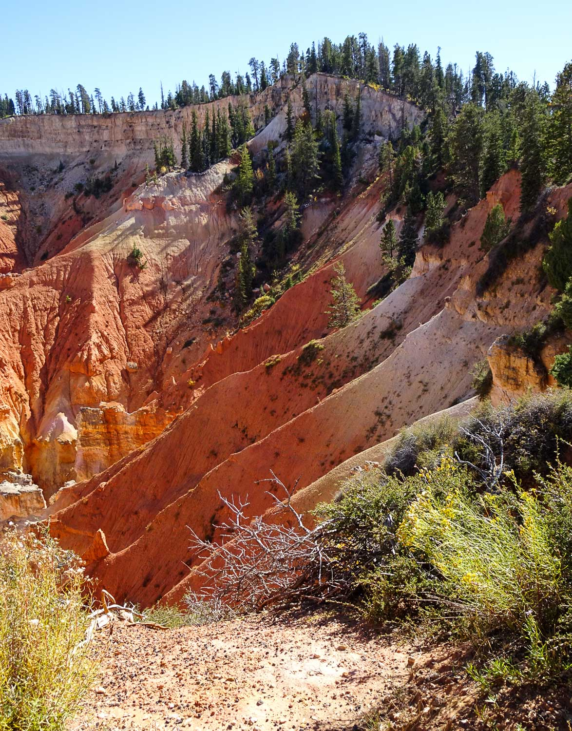 """The """"Pink Cliffs"""" of the Grand Staircase"""