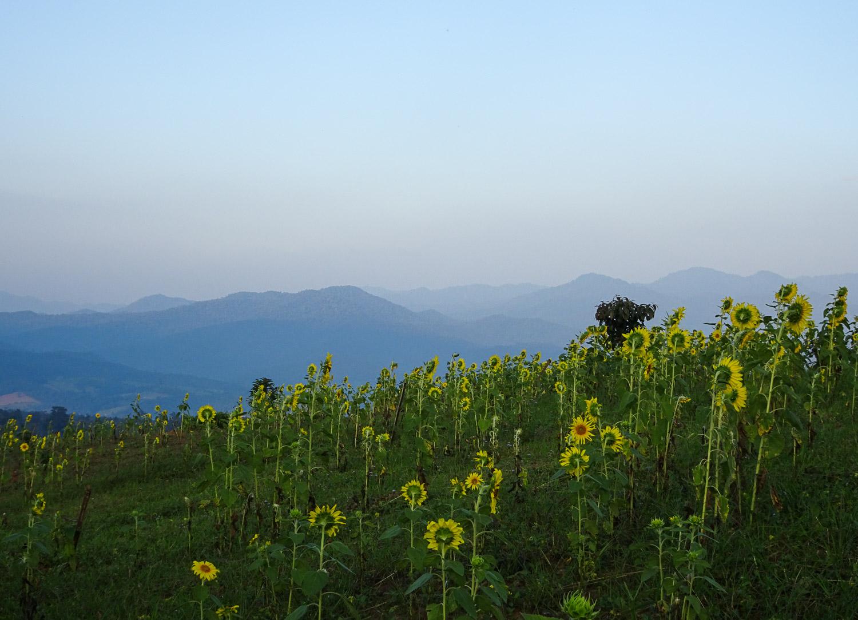 PaiThailand_Blog (58 of 102).jpg
