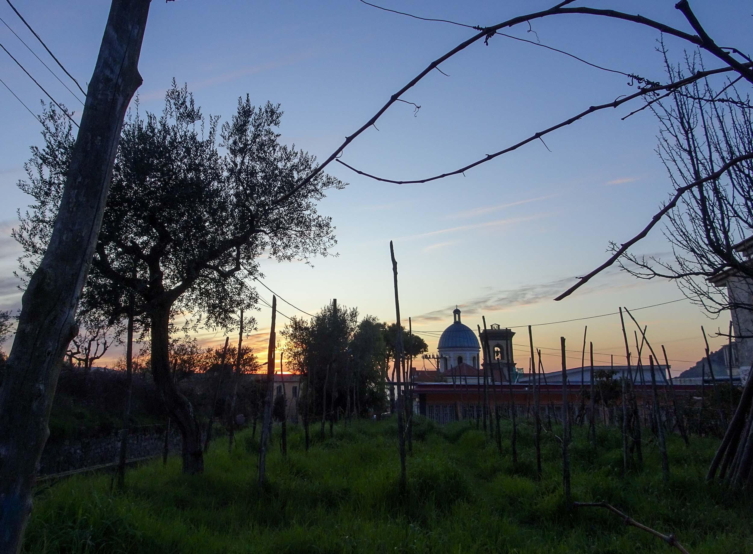 Watching sunset beyond the vineyard at Antonio's Airbnb in Arola, Italy
