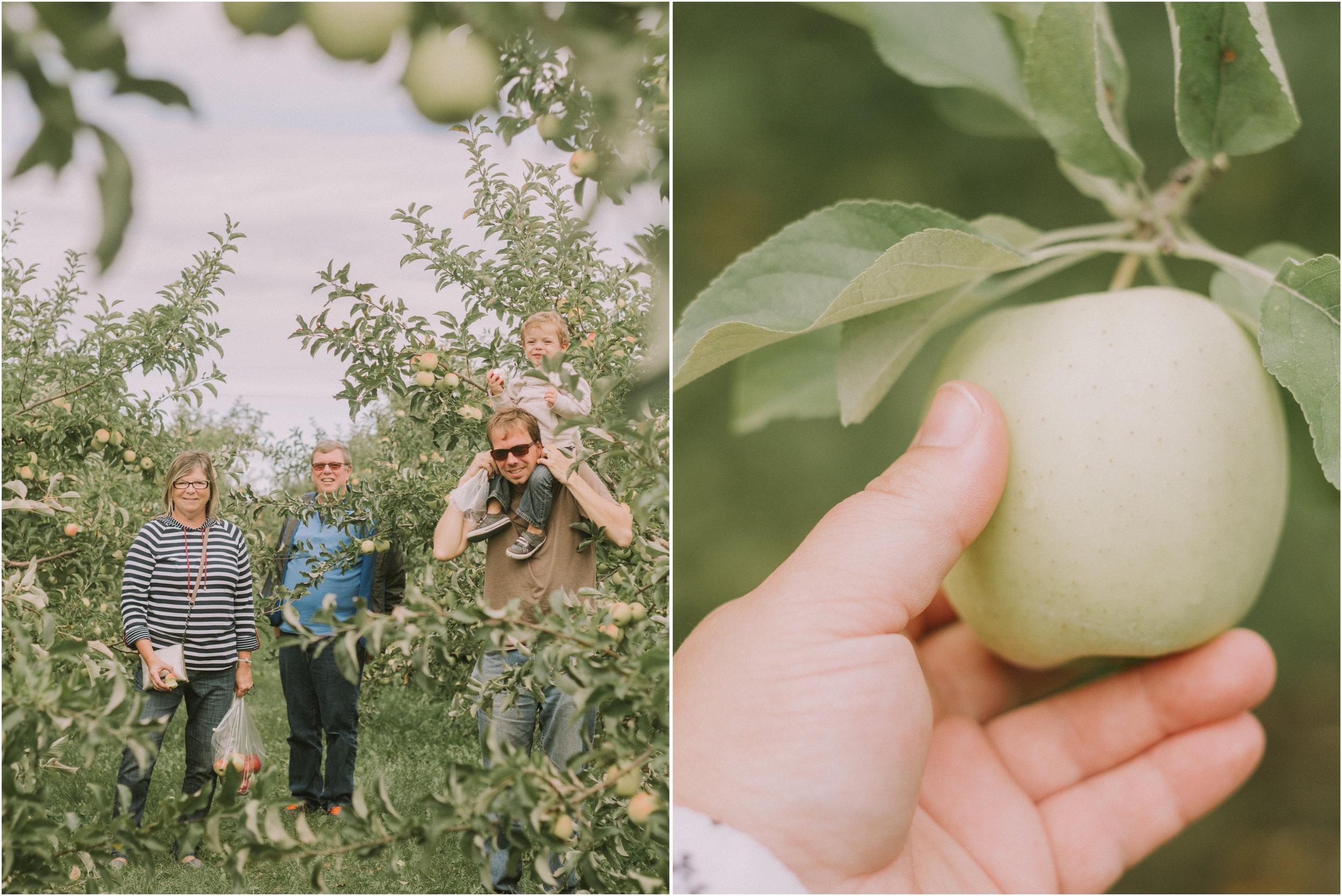 Wisconsin Apple Picking Documentry Photographer 4.jpg