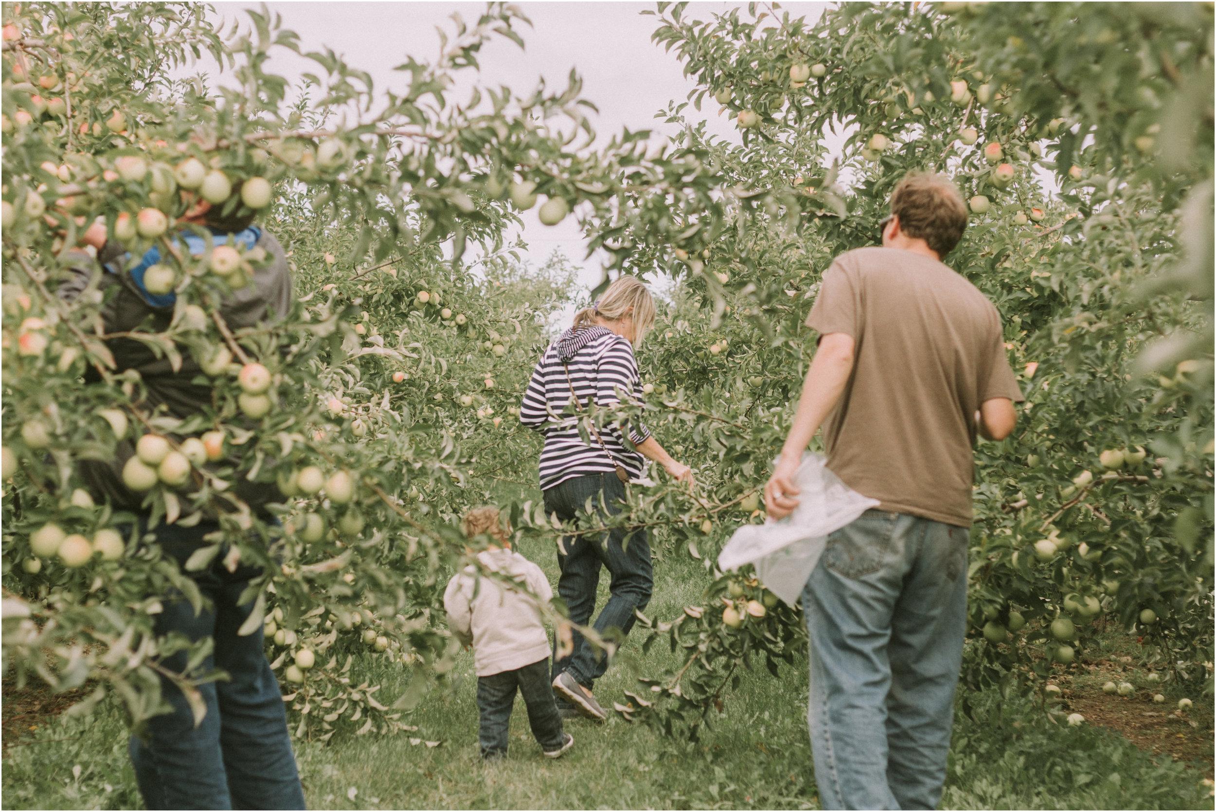 Wisconsin Apple Picking Documentry Photographer 9.jpg